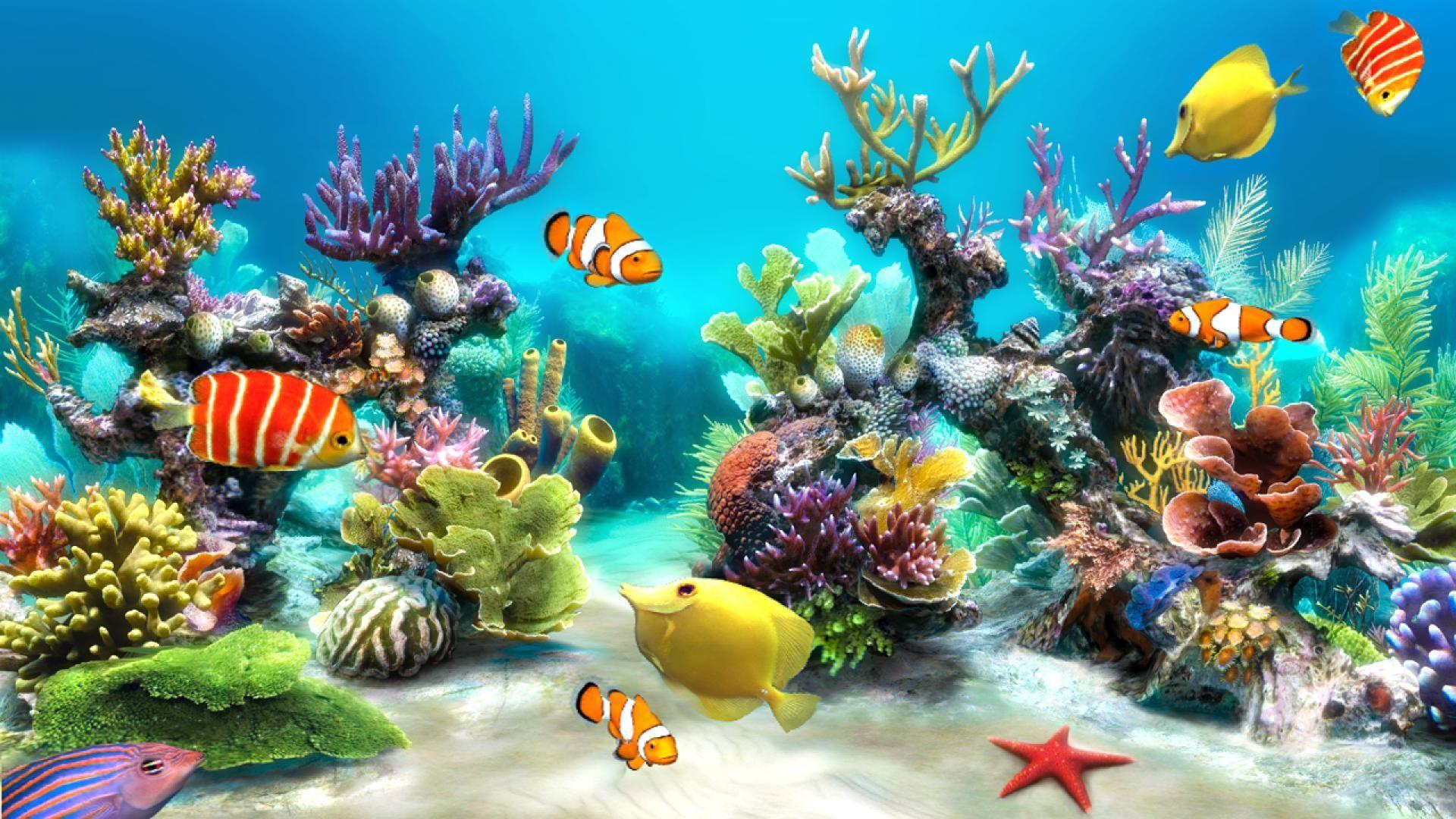Aquarium Animated Desktop Wallpaper Download : Fish tank wallpaper for windows  10