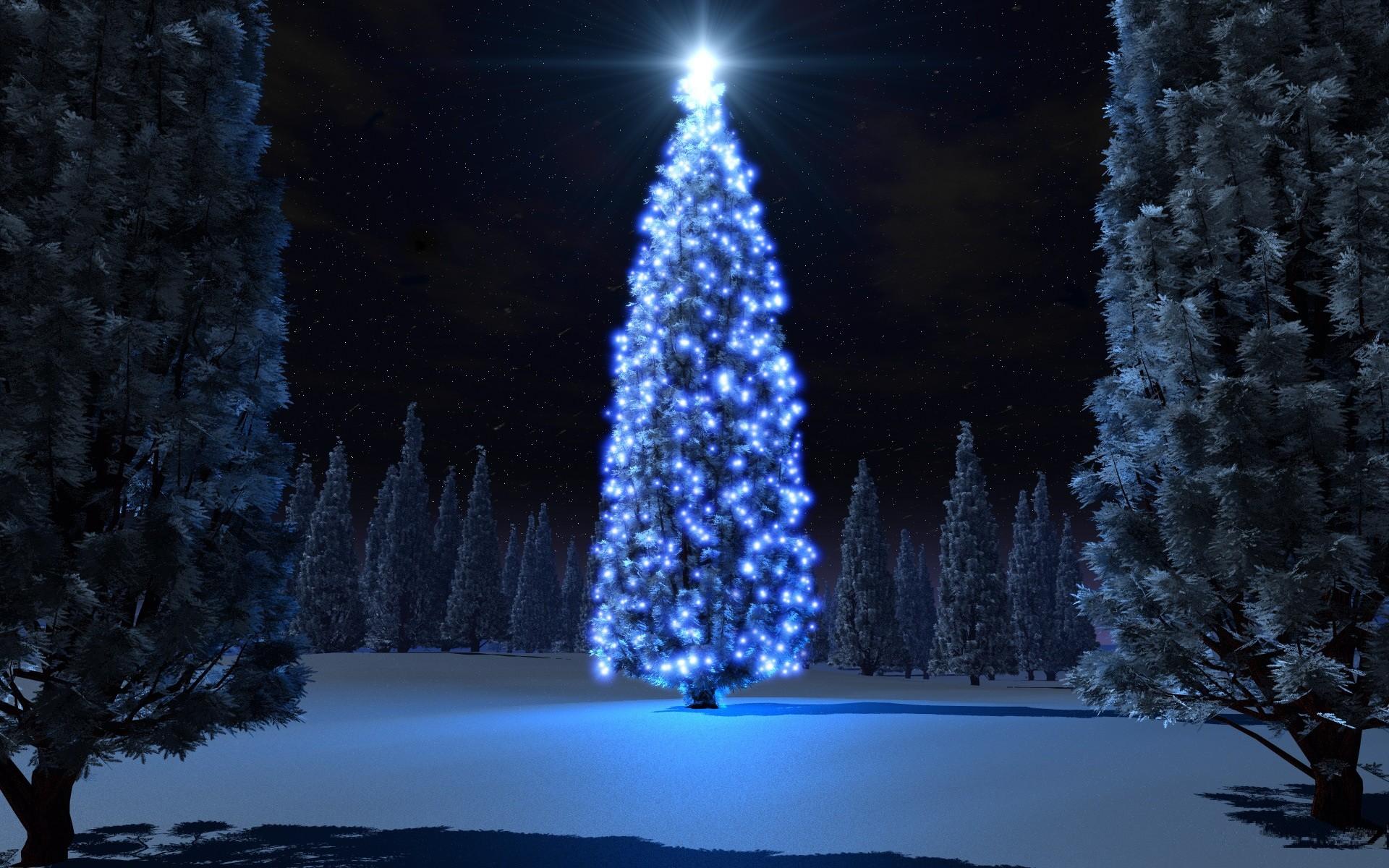 Photos Christmas HD Live Download.