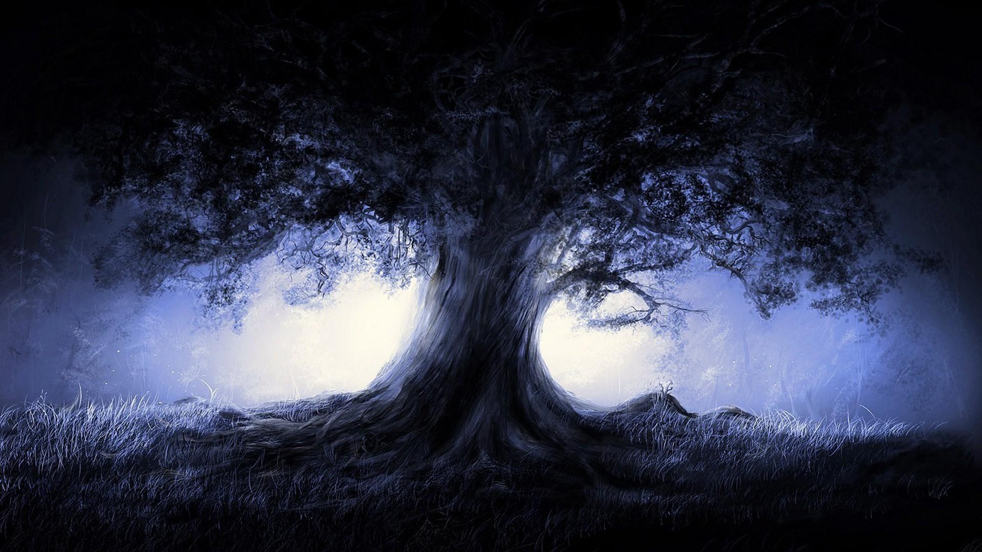 Free Widescreen Fantasy Wallpapers Tree 1366×7 #4324 Wallpaper | Wolimej.Com