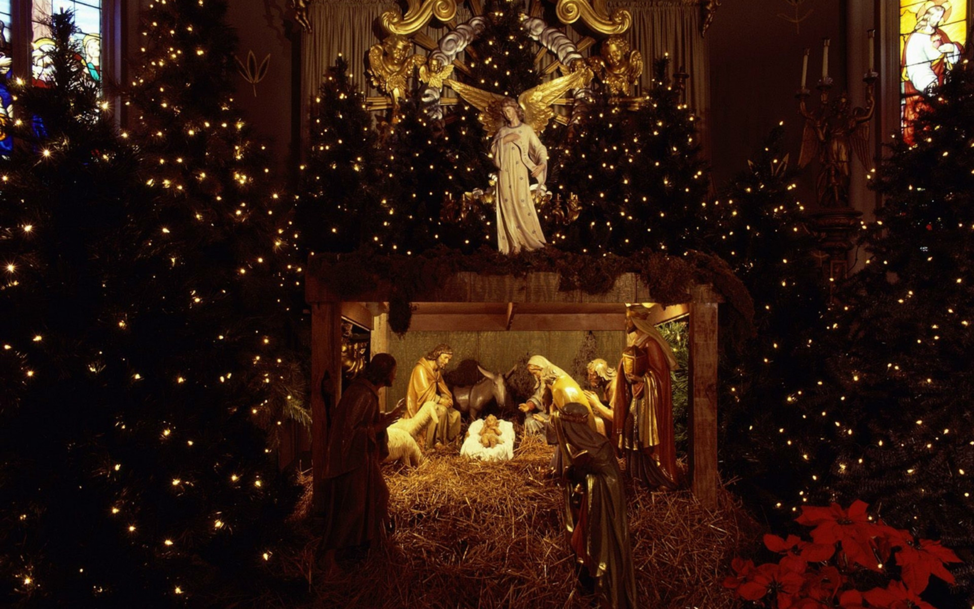15 Christmas Tree In Lights Wallpapers