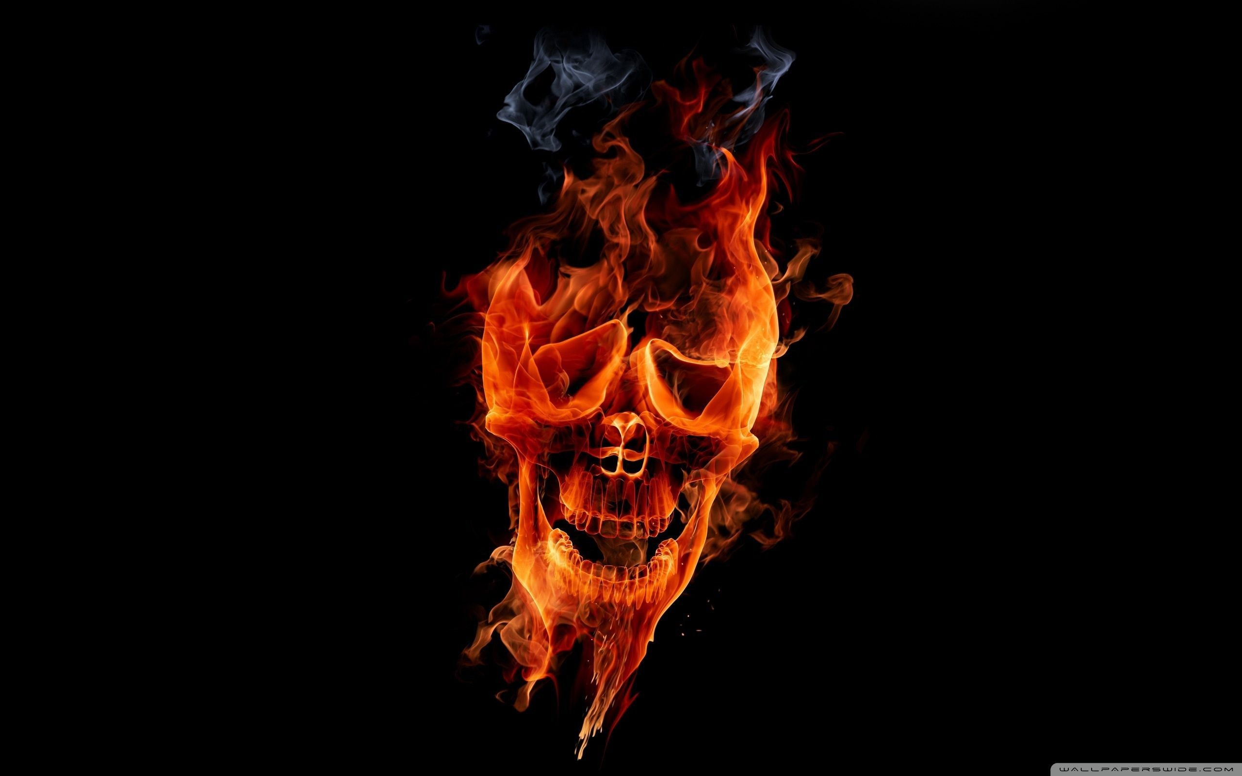 Fire Skull Wallpaper Full HD [2560×1600] – Free wallpaper full hd .