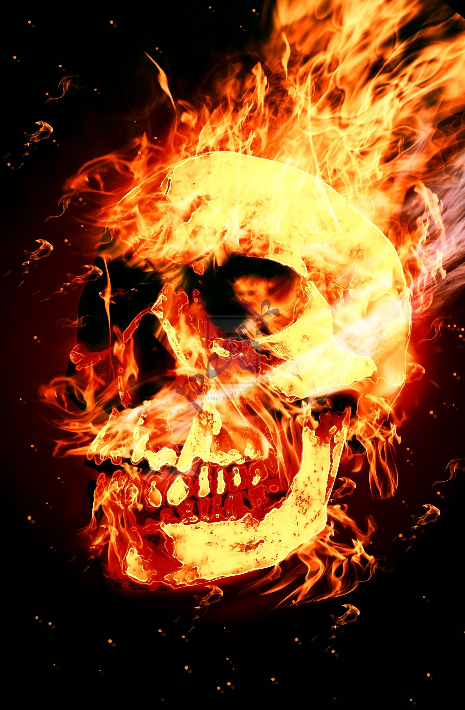 Fire Skull Pics, wallpaper, Fire Skull Pics hd wallpaper, background .