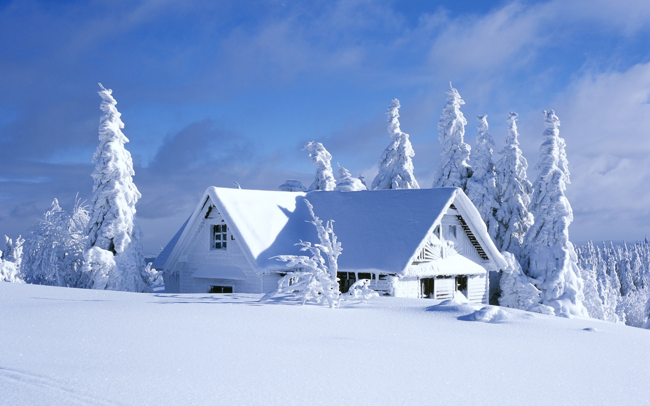 House-Covered-In-Snow-desktop-wallpaper