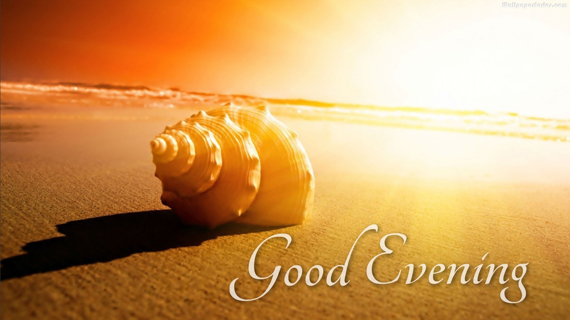 Good Evening Wallpapers : Find best latest Good Evening Wallpapers in HD  for your PC desktop background & mobile phones.
