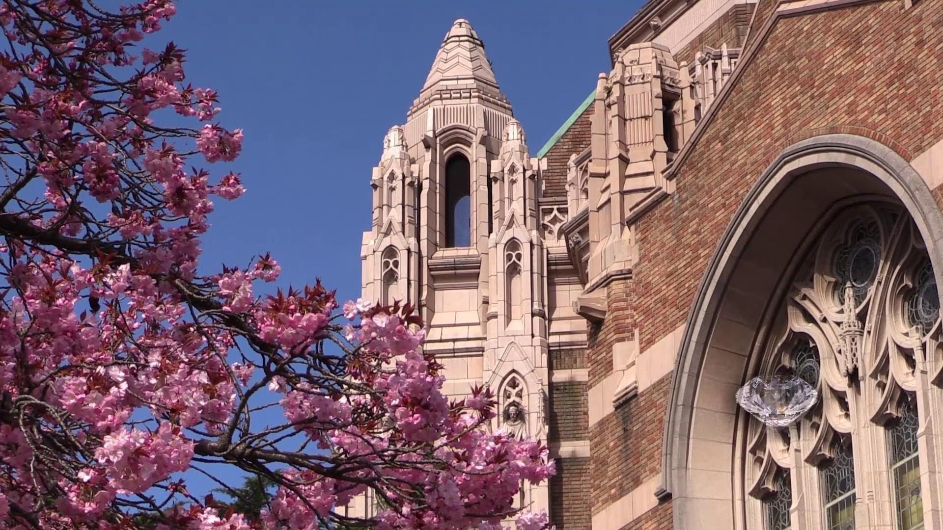 Spring at University of Washington 1080p HD