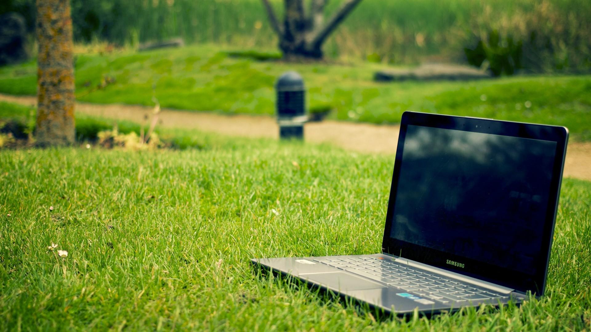 Wallpaper laptop, samsung, grass