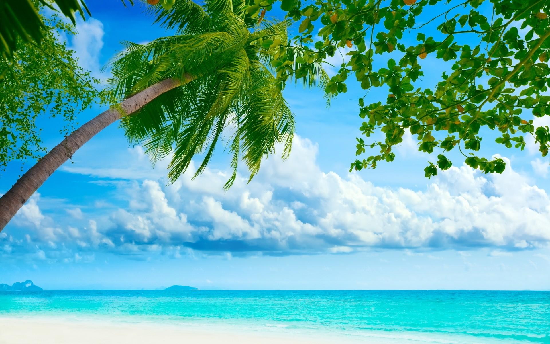 Moving Desktop Backgrounds Beach