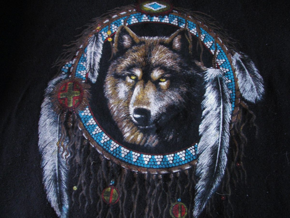 native american wolf pictures desktop hd native american wolf pictures