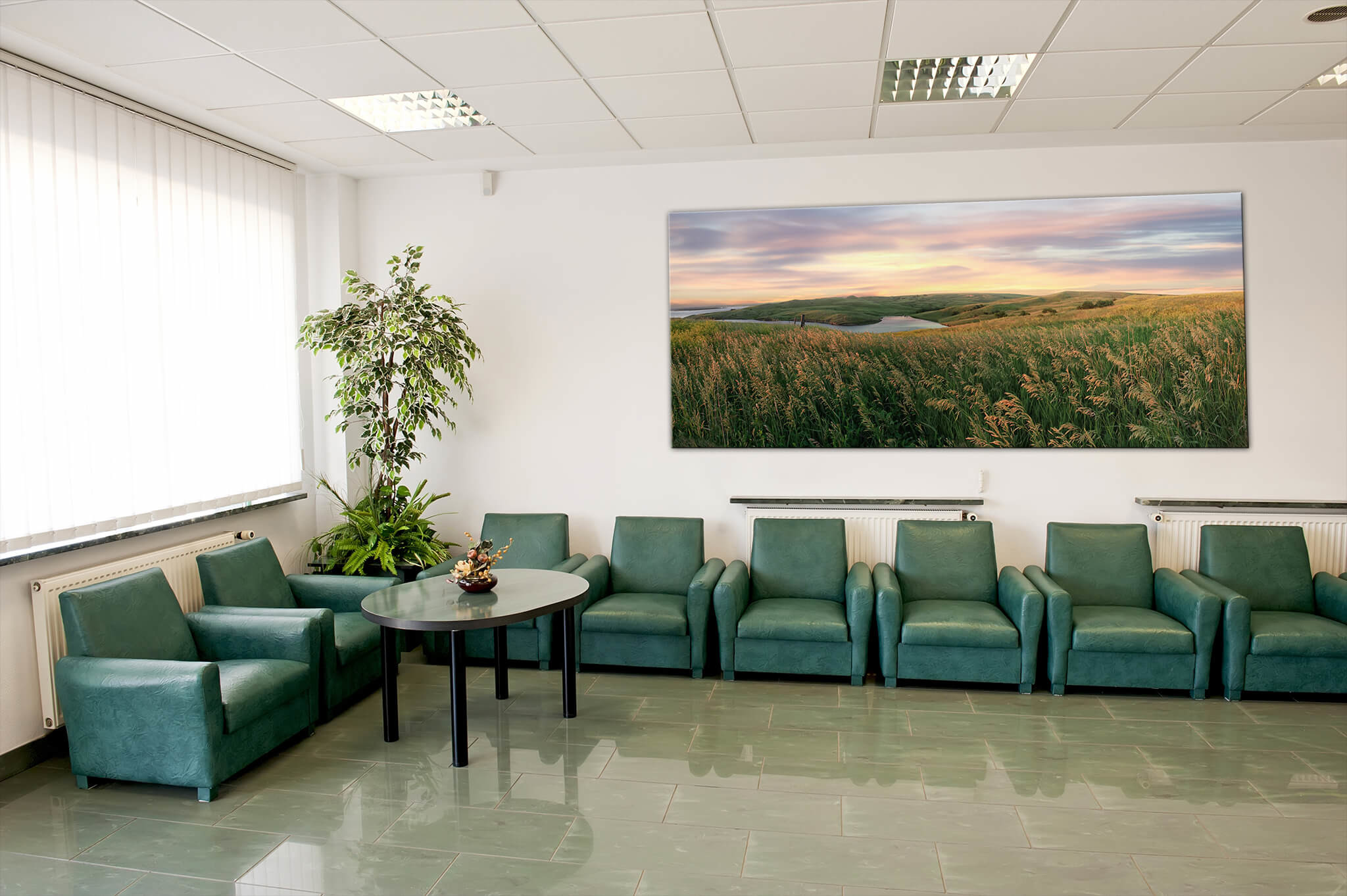I provide ideal imagery for clinic settings including hospitals, clinics, dental  offices, and other healthcare spaces.