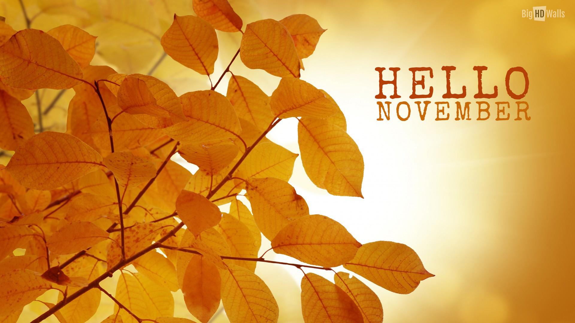 November wallpaper