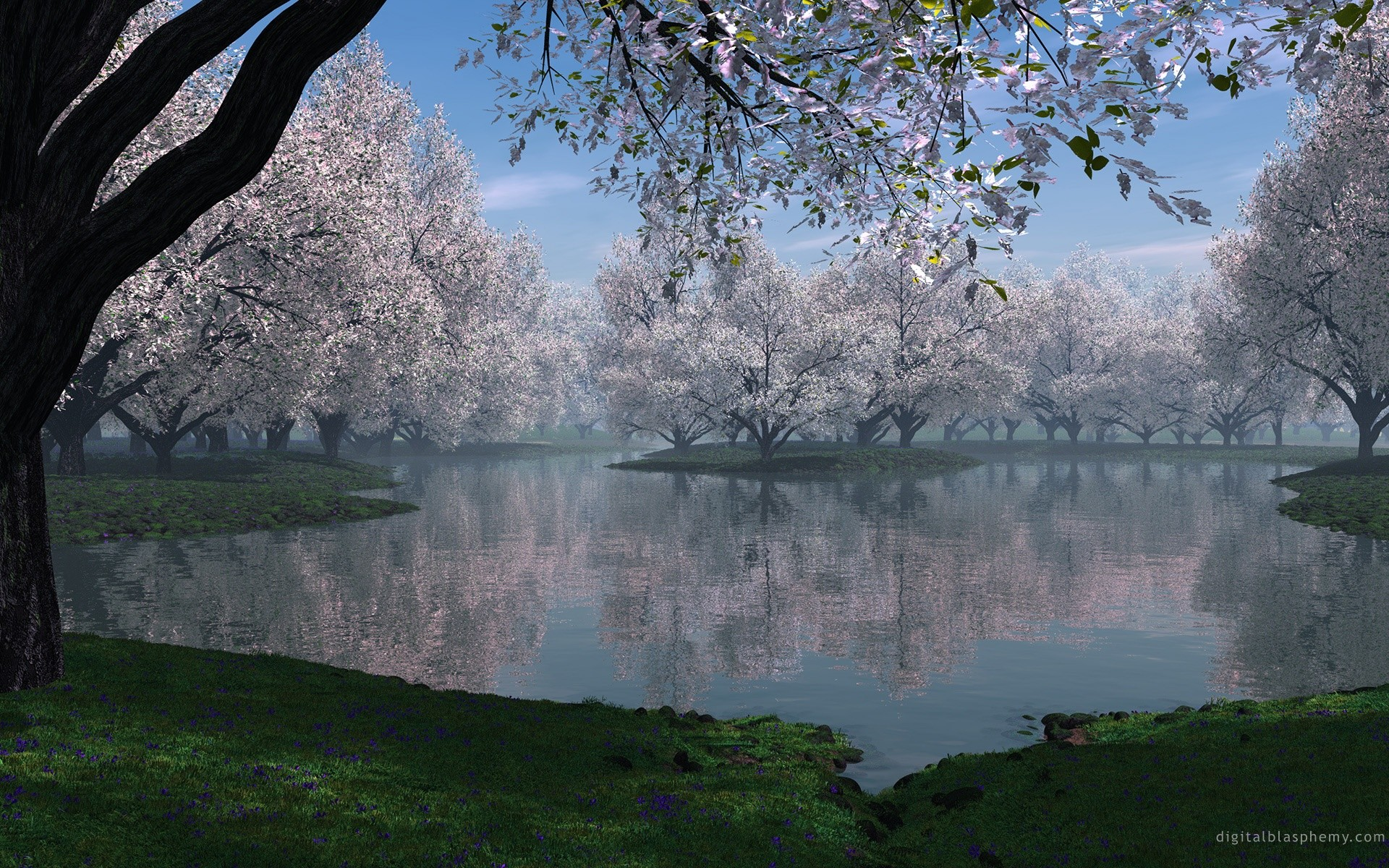 Beautiful Spring Landscape HD Widescreen Wallpapers