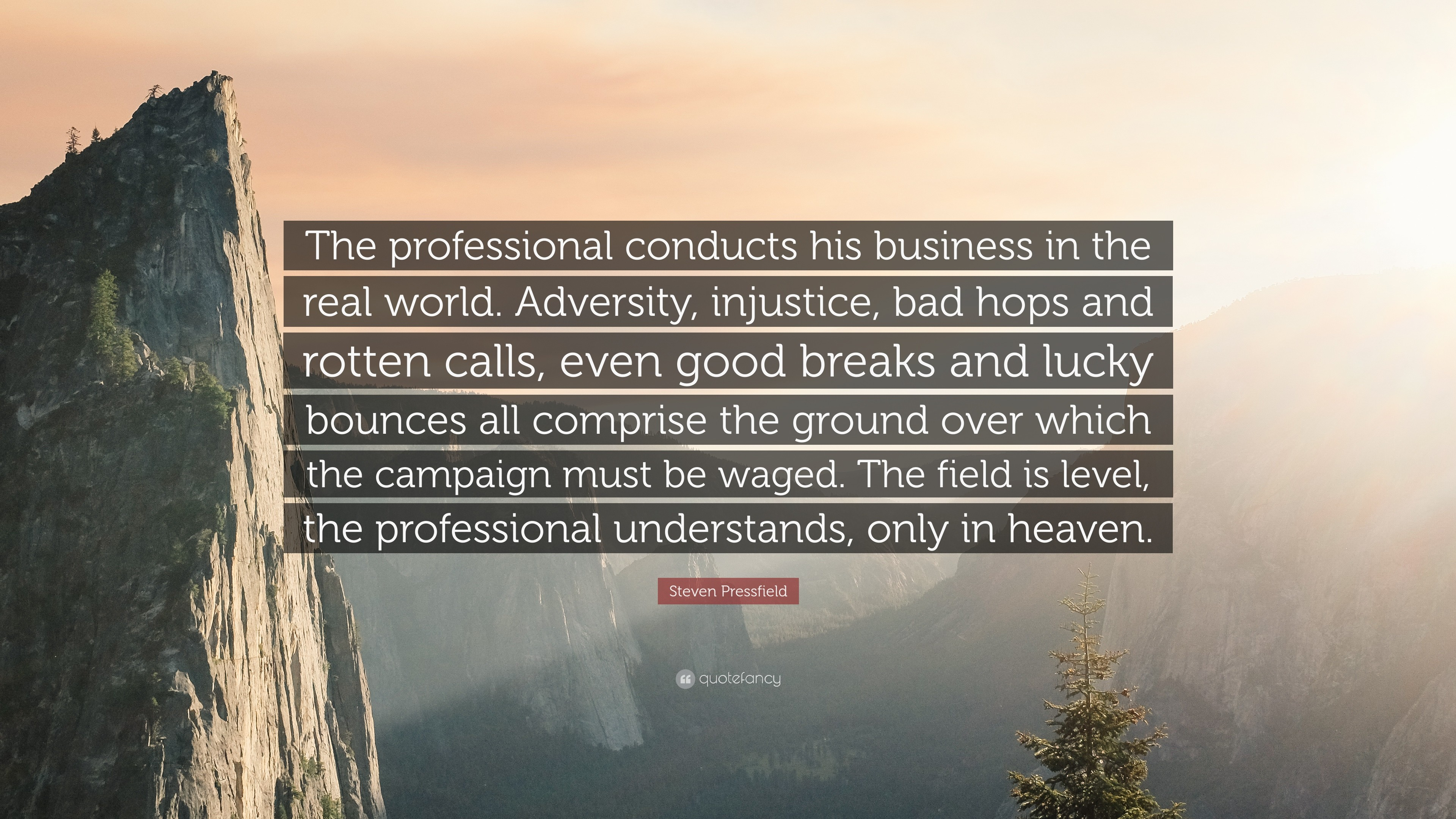 """Steven Pressfield Quote: """"The professional conducts his business in the  real world. Adversity"""