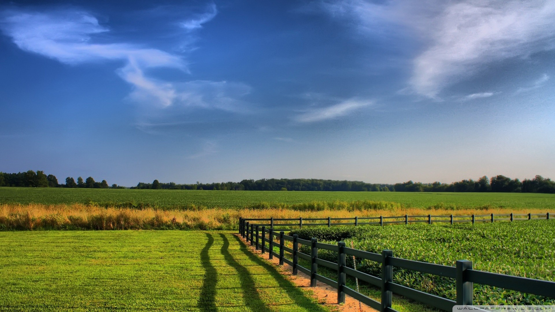 farming computer wallpaper backgrounds – photo #4. Snood For Windows Free  download and software reviews