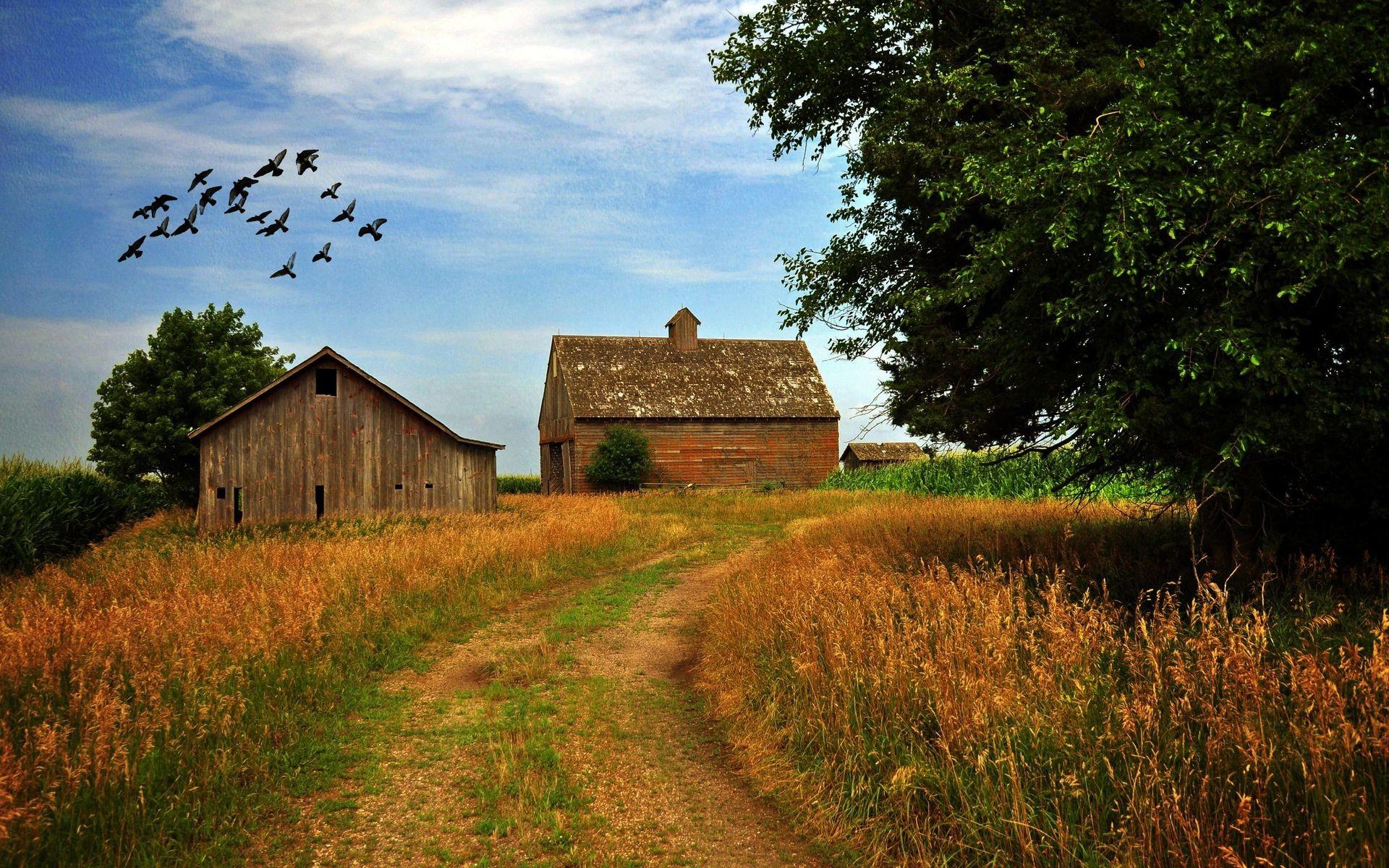Farm Wallpaper #10222