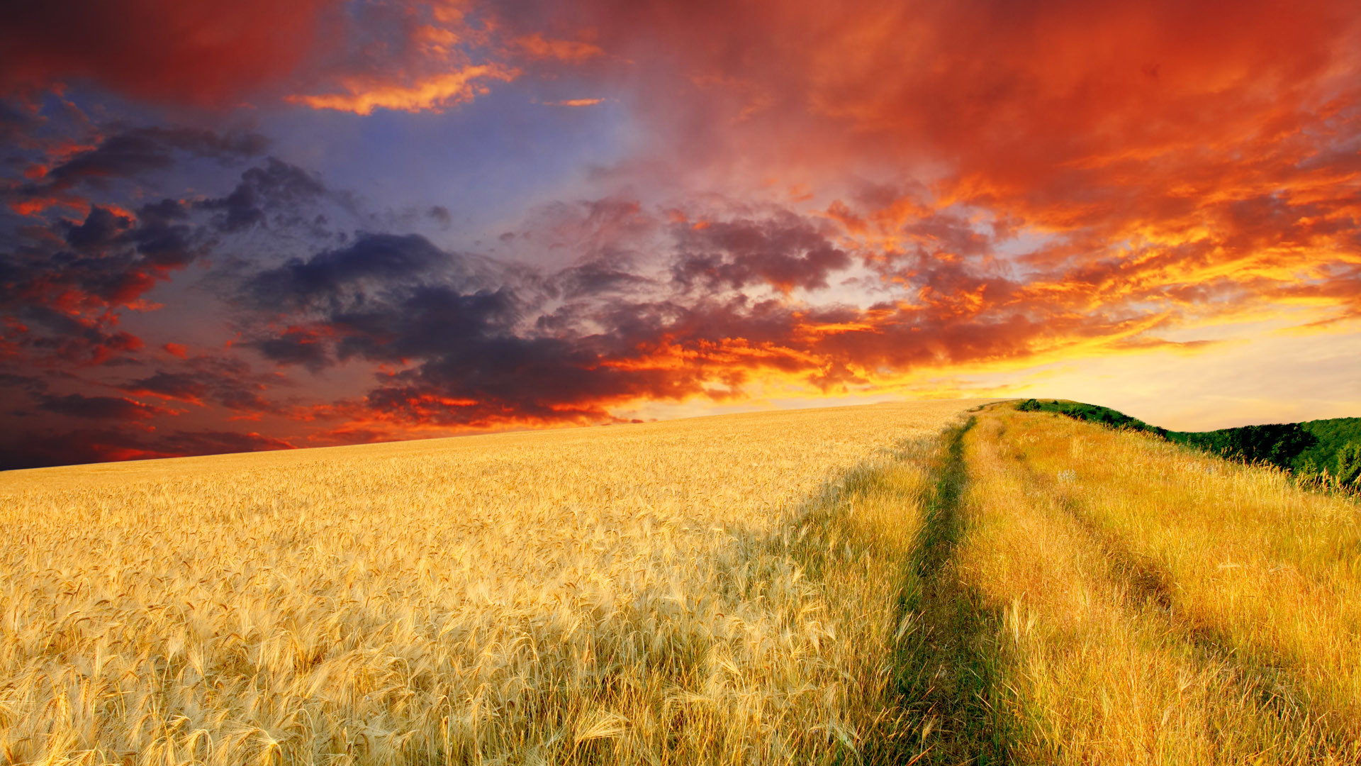 Farm Wallpapers, px   Wallpapers PC Gallery