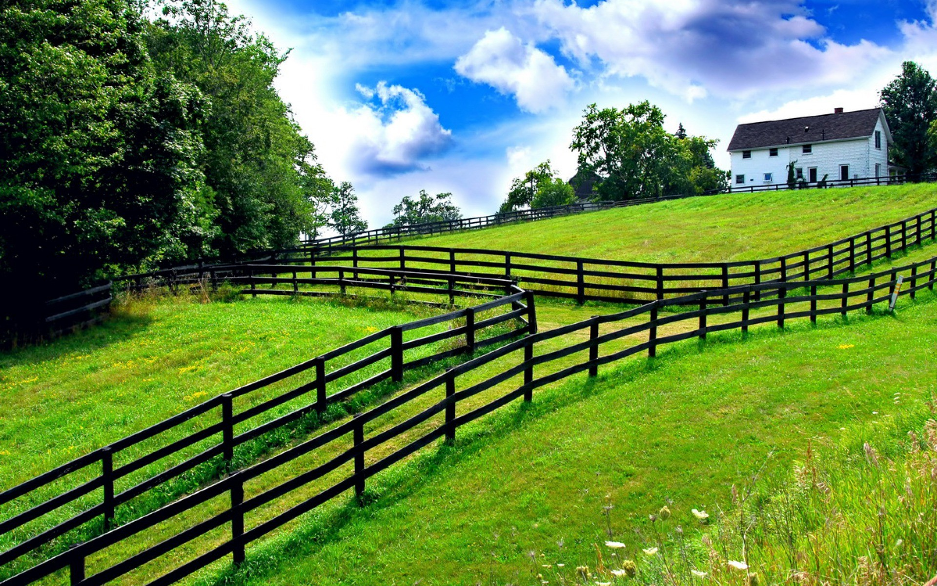 Summer Farm – 3D and Abstract Wallpapers   Best HD Wallpapers, Photos .