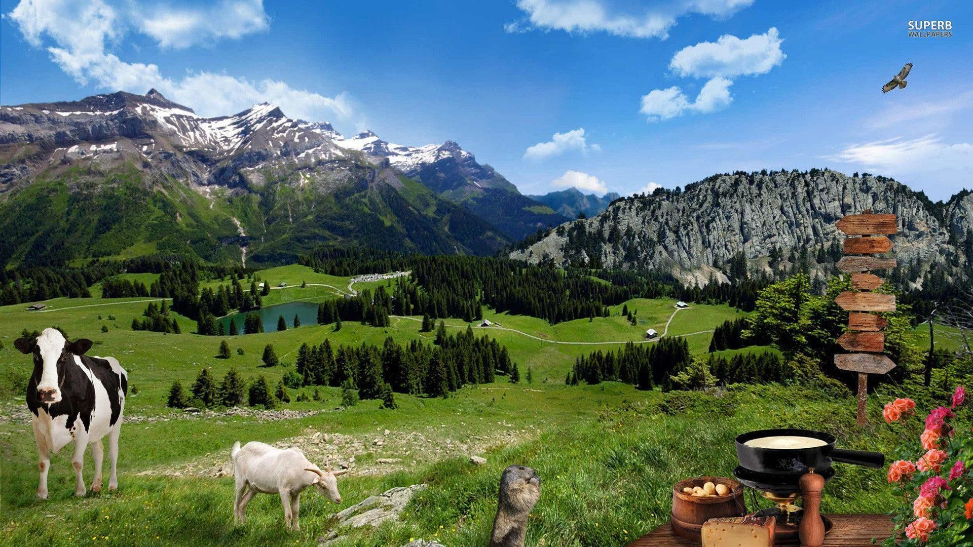 Farm animals on the mountain meadow wallpaper – Animal wallpapers – #