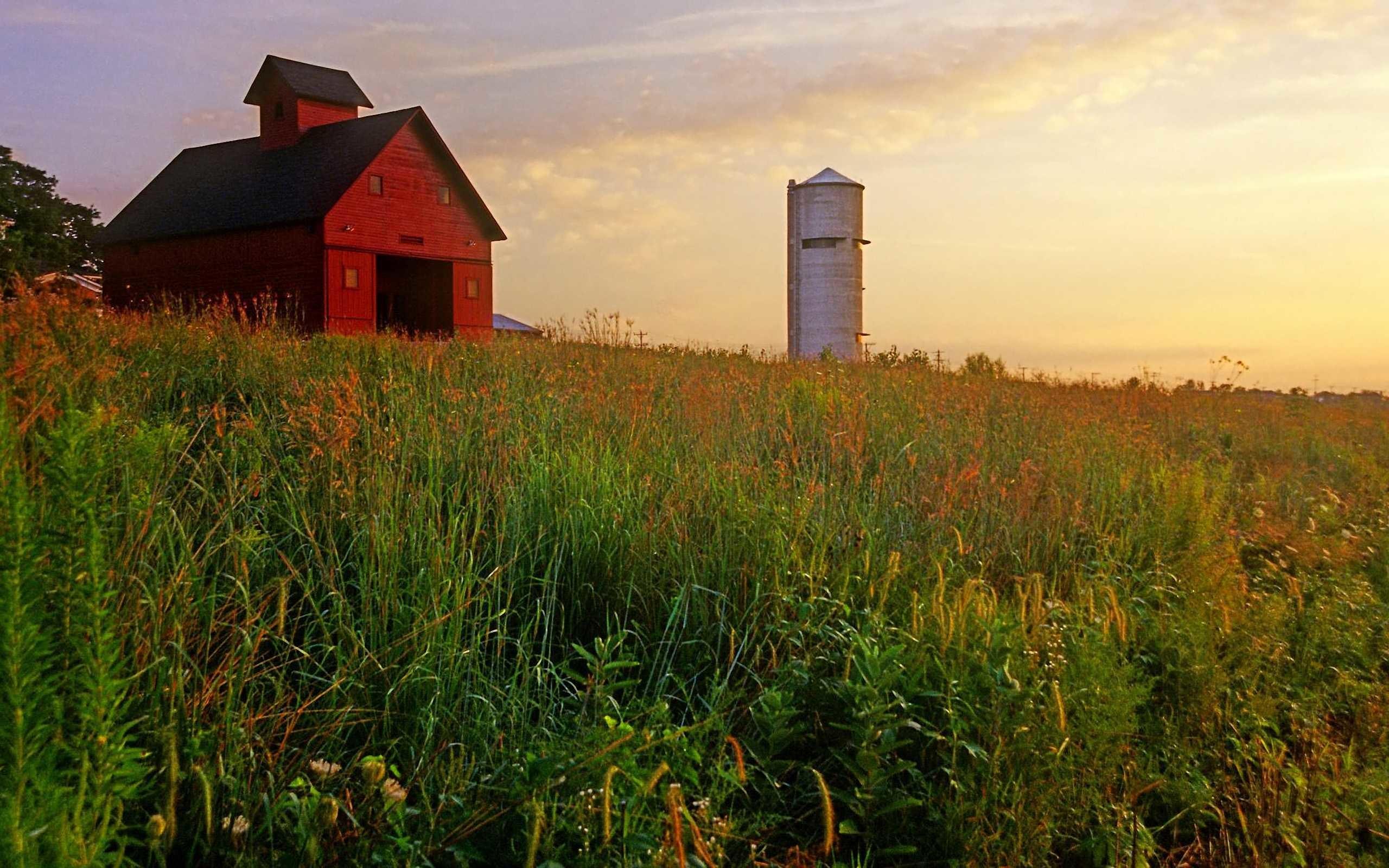 Peck Farm Granary and Silo, Kane County, Illinois