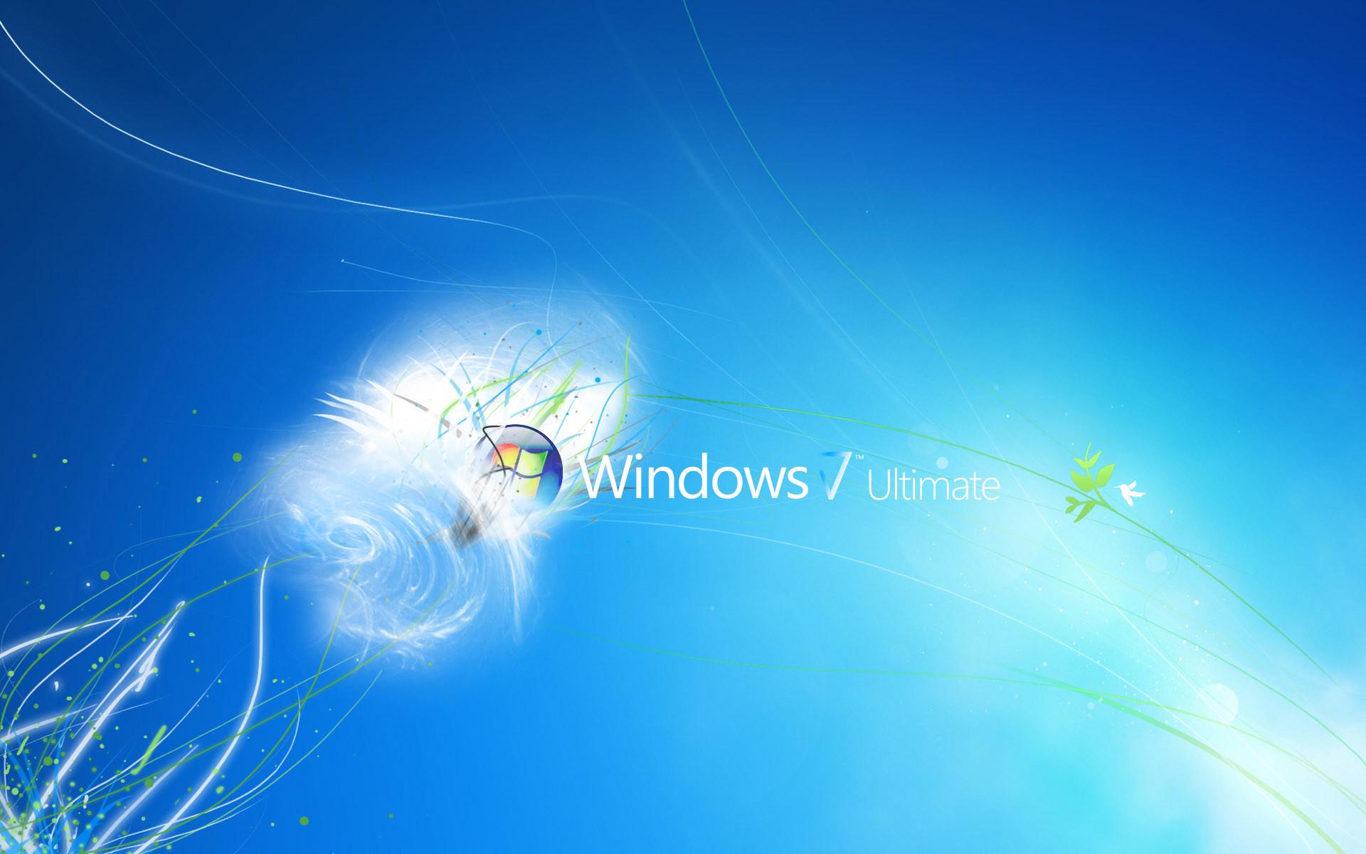 Windows 31.jpg
