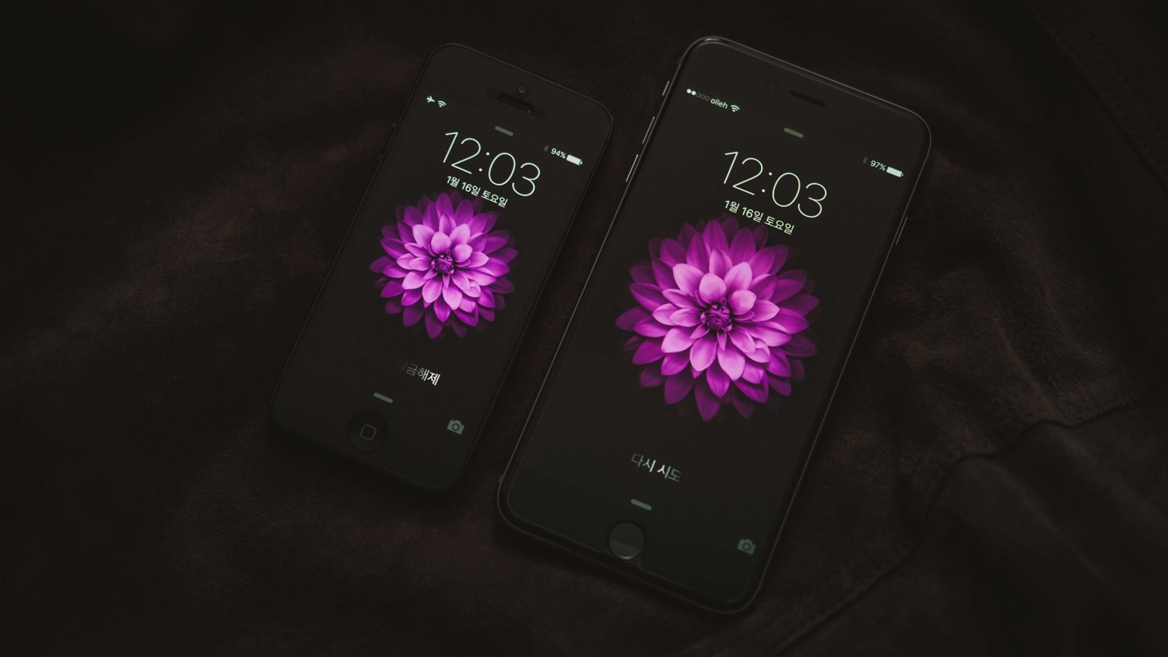 Wallpaper apple, iphone 6, display, touch screen