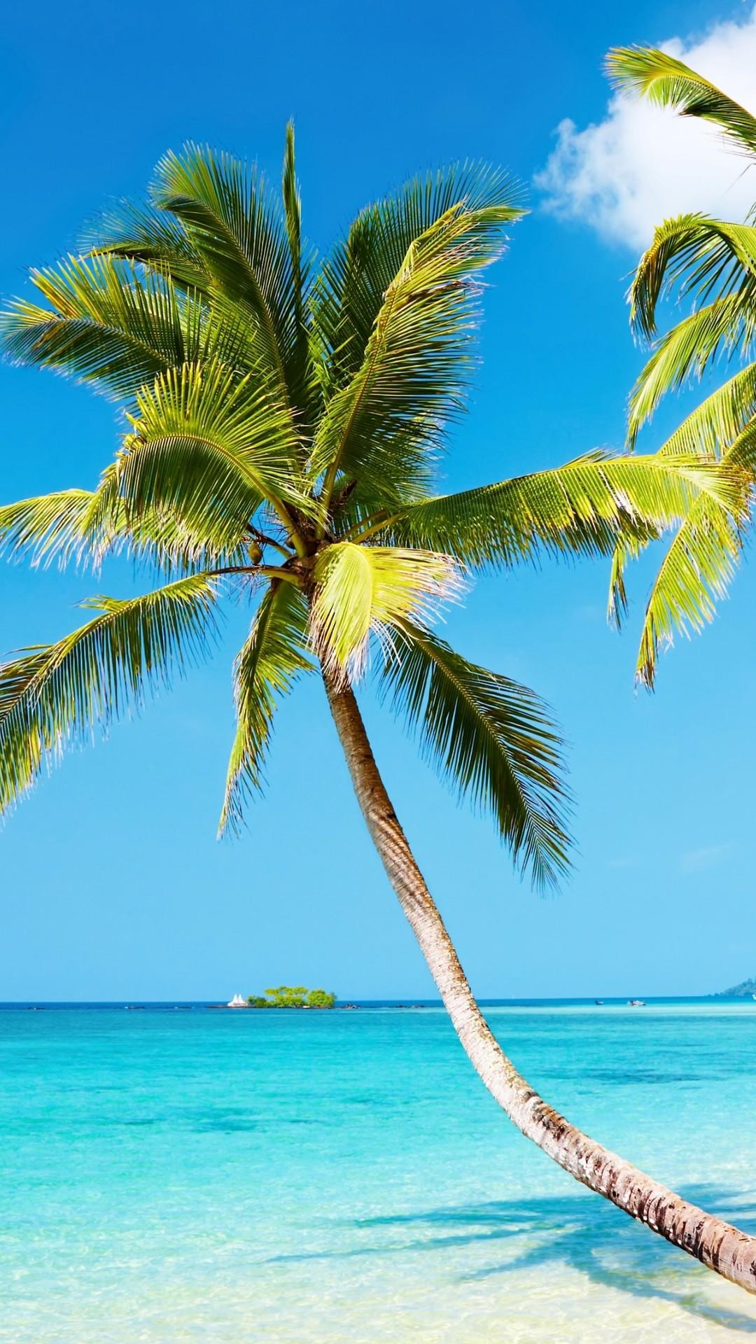 Tropical beach 4K Ultra HD wallpaper   4k-Wallpaper.Net