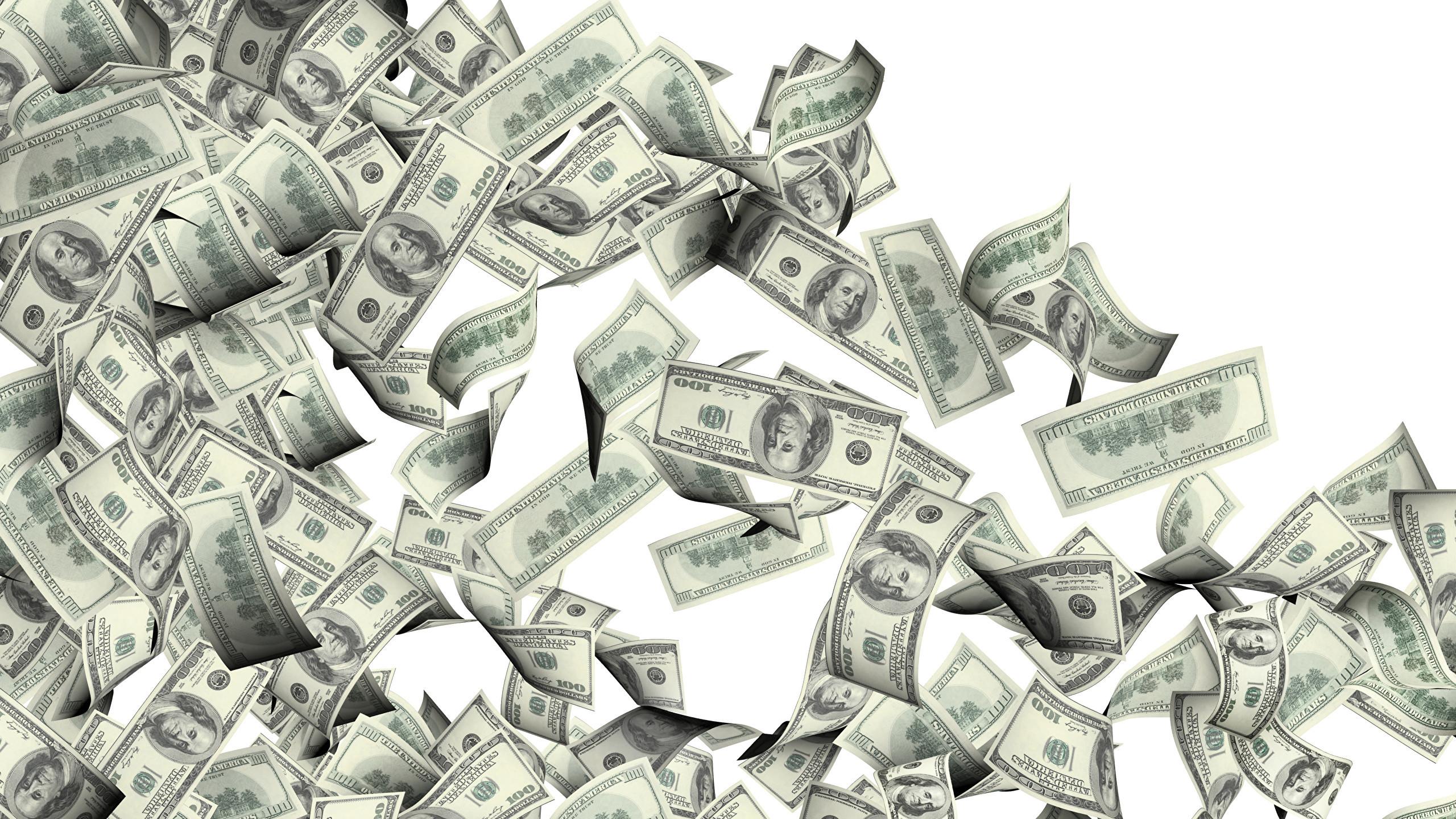 Wallpaper Dollars Paper money 100 Money White background Banknotes