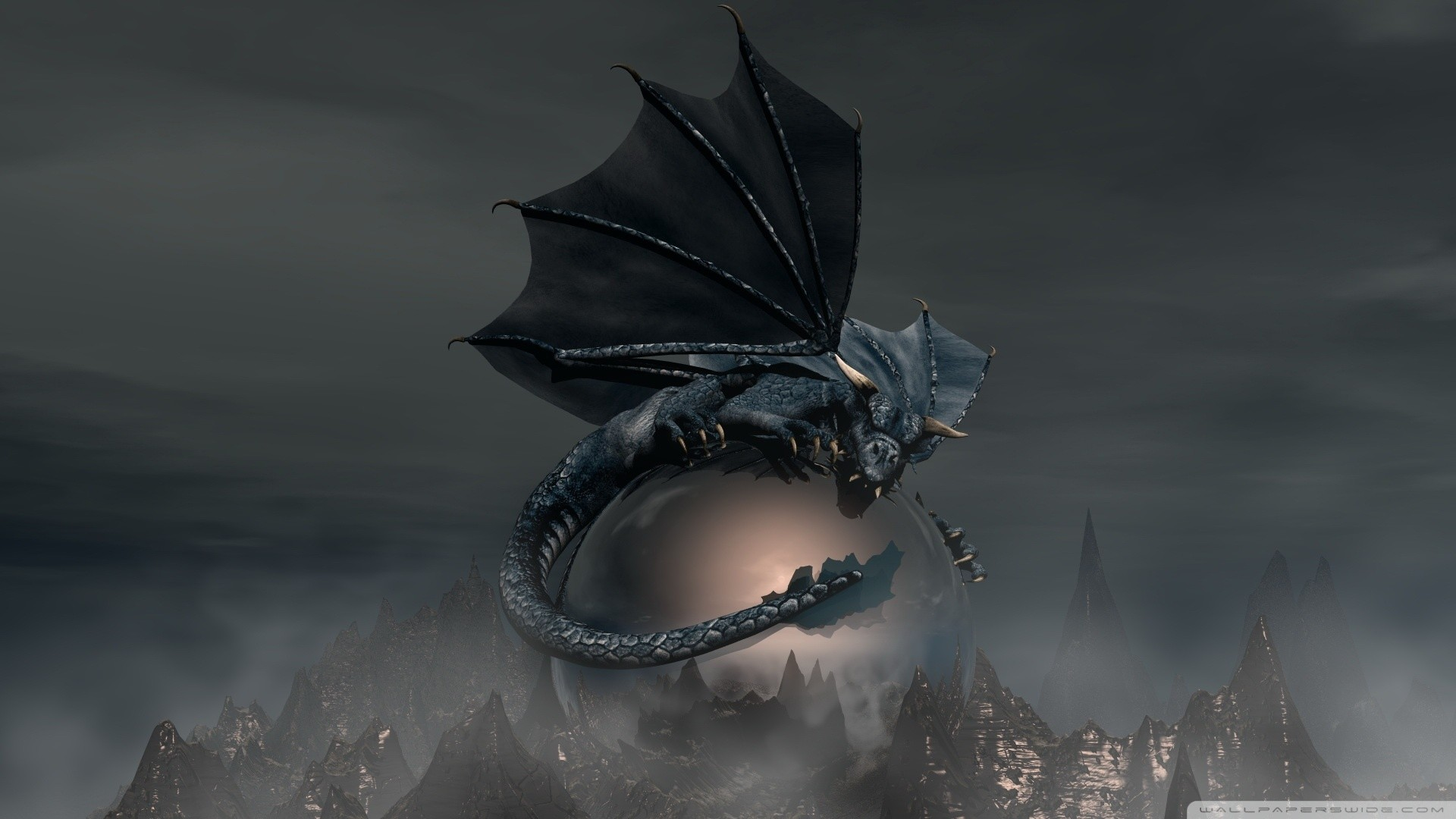 Black Dragon Wallpaper Black, Dragon