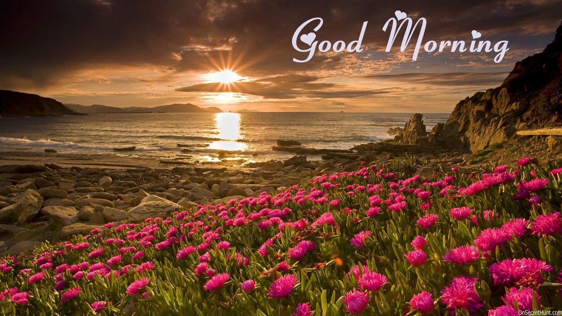 Good Morning Wallpaper 1920×1080 hd background hd screensavers hd wallpaper  1920p 1080p wallpaper full
