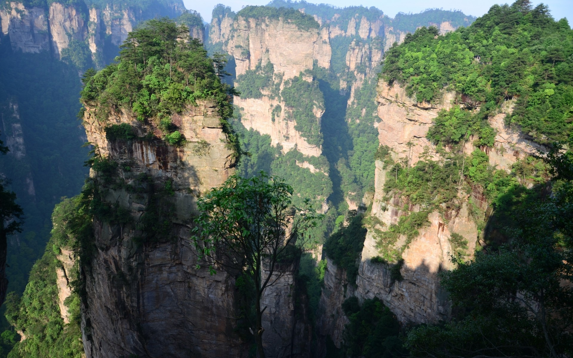 Chinese Mountains & Trees wallpapers and stock photos