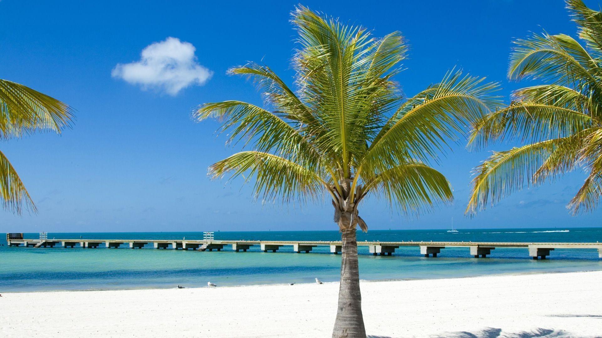 Key West, Florida HD Wallpaper –