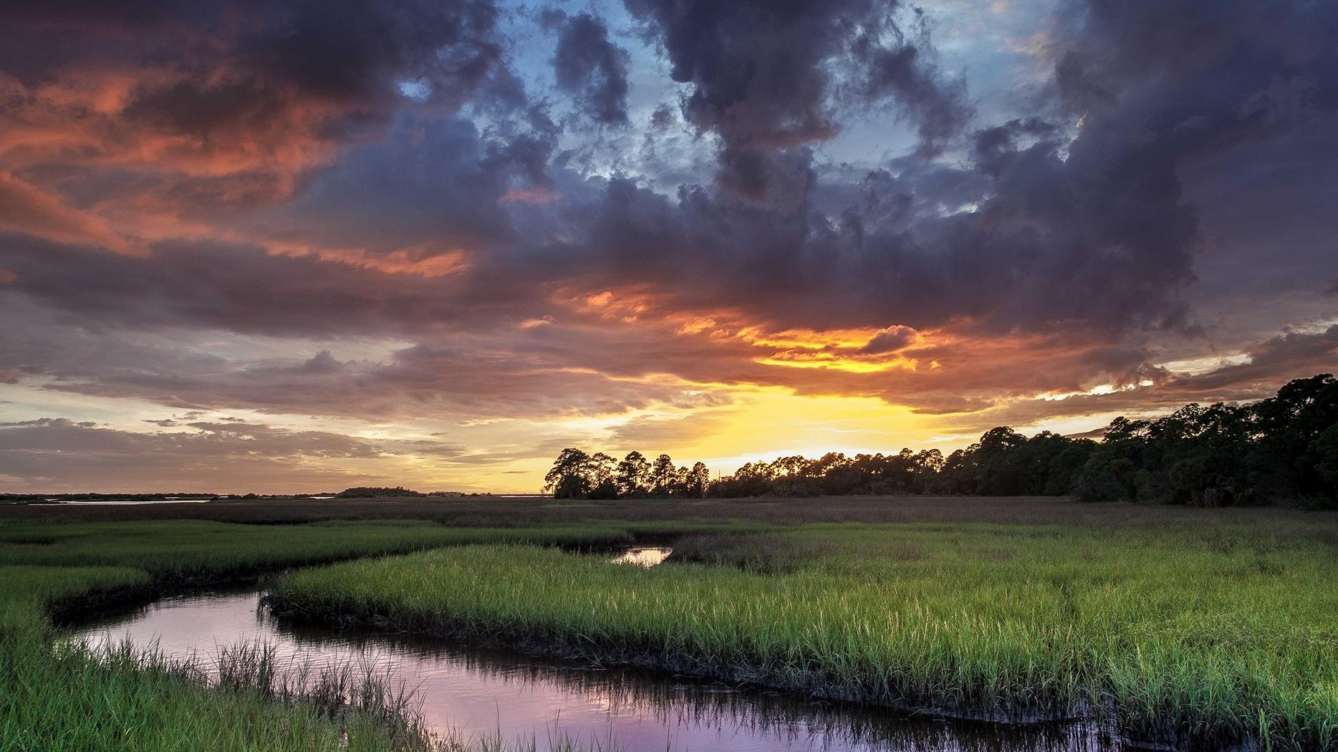 Florida Tag – Cedar Key Florida Cool Sunset River Nature Beach Picture  Ideas for HD 16