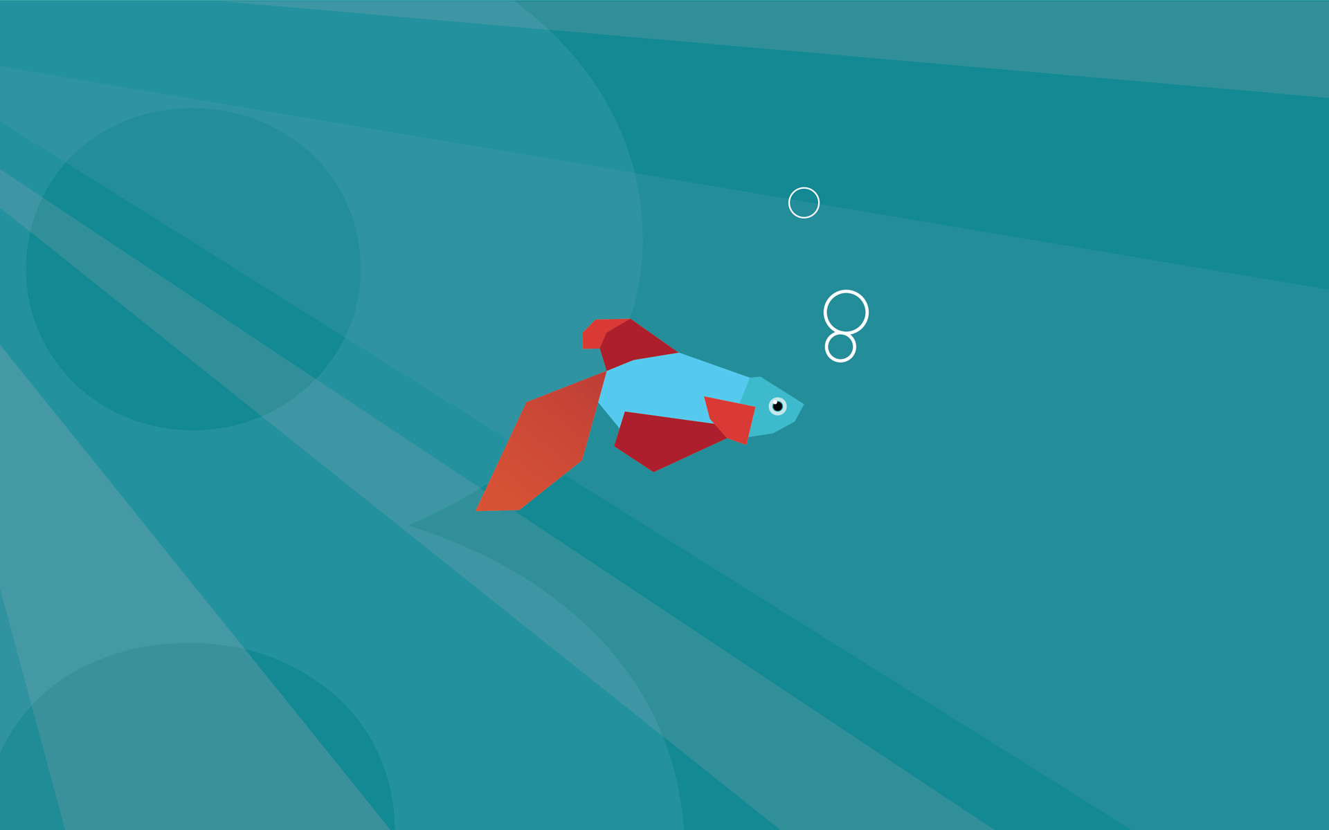Windows 10 Fish Images (Mobile, iPad)