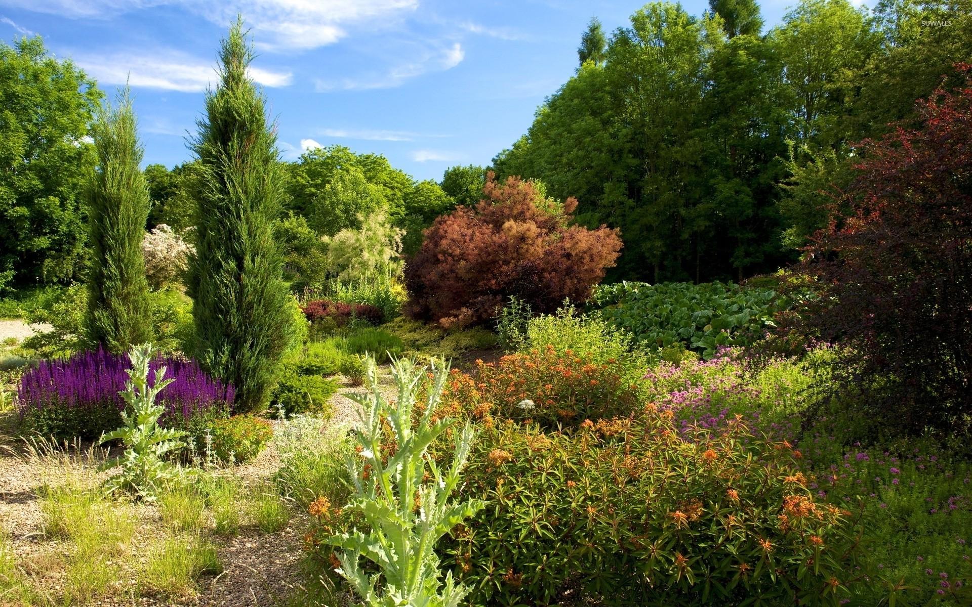 Heavenly garden on a sunny day wallpaper