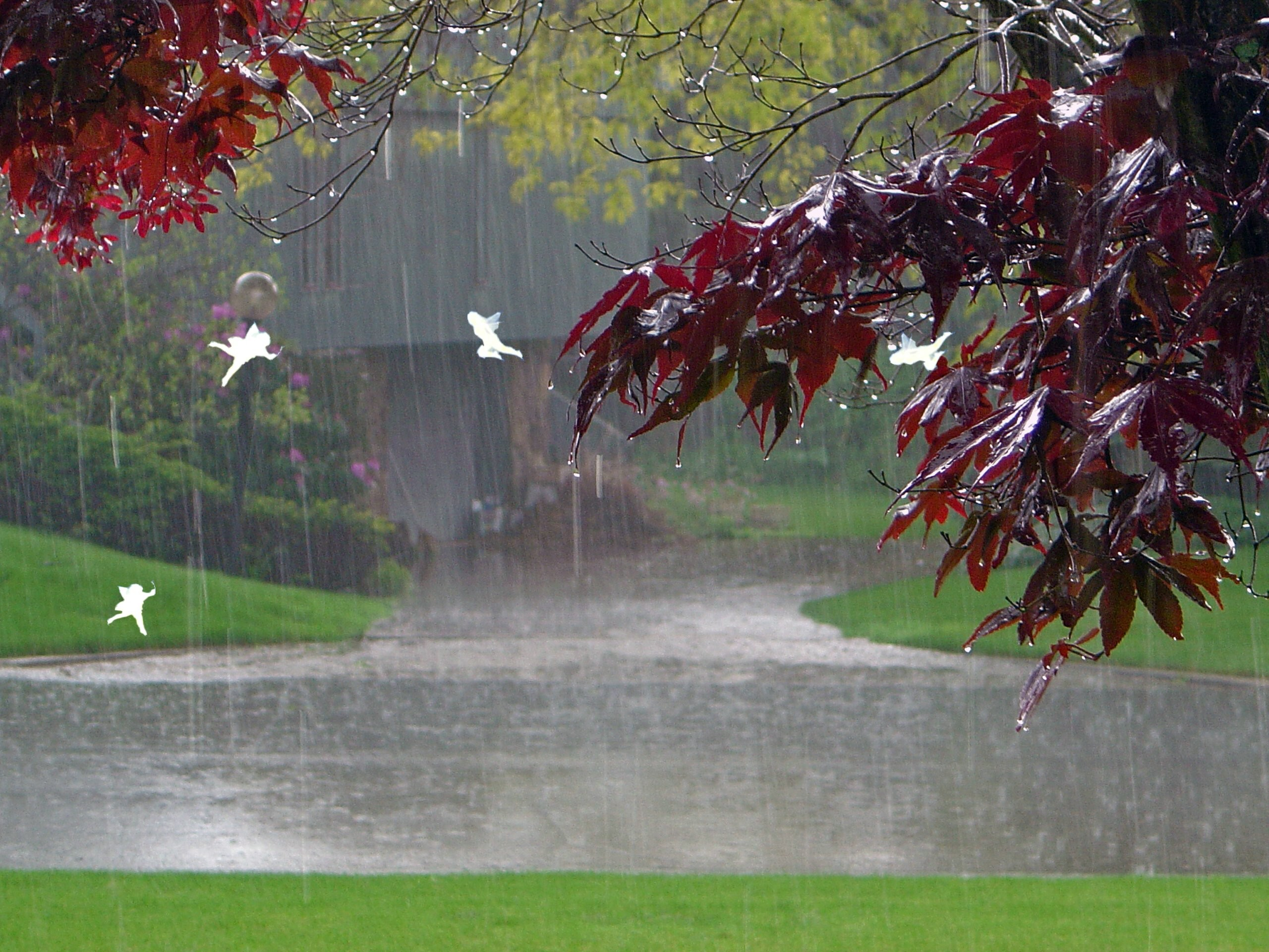 Beautiful Rainy Day Wallpaper