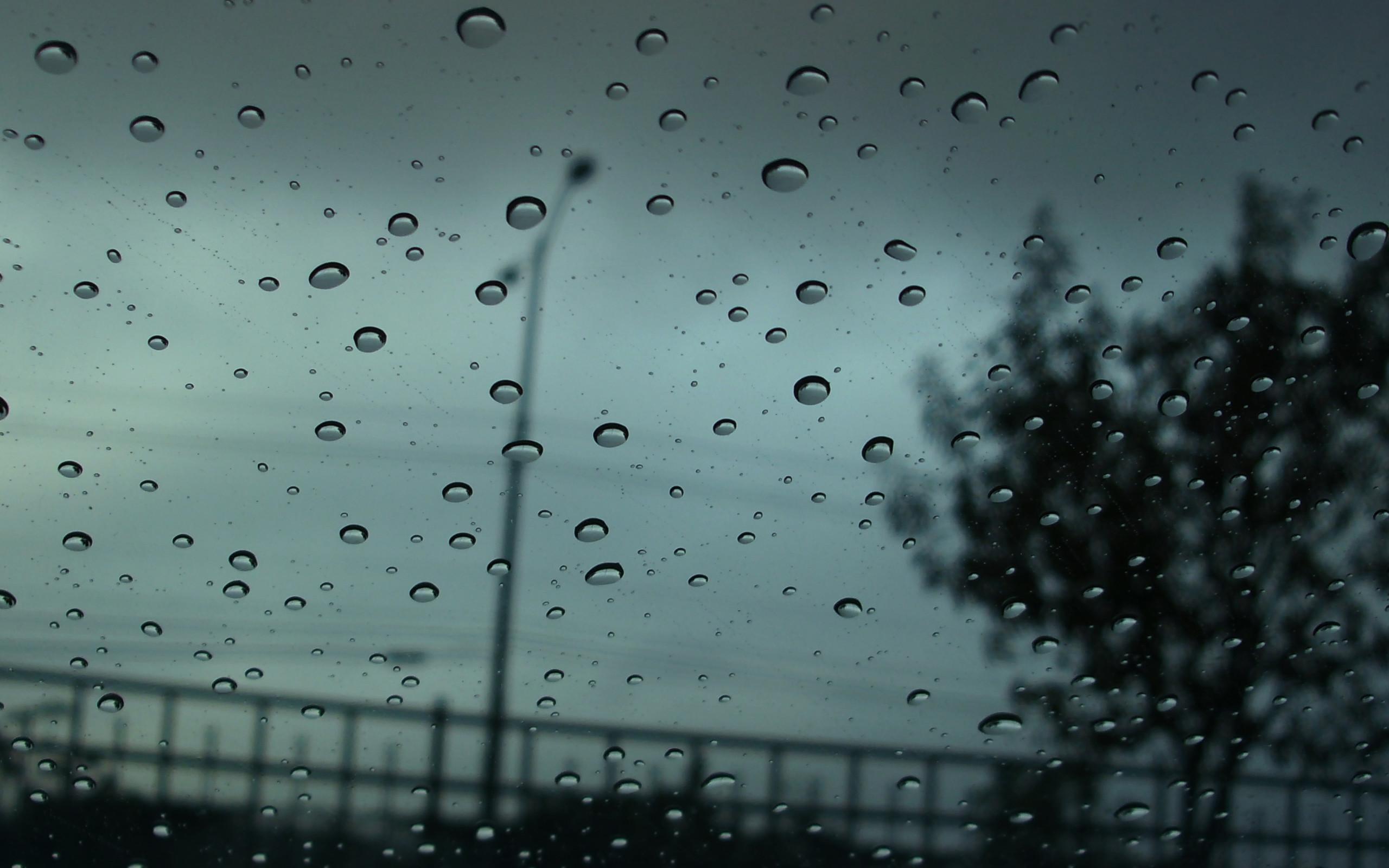 Autumn Rain wallpapers   Autumn Rain stock photos