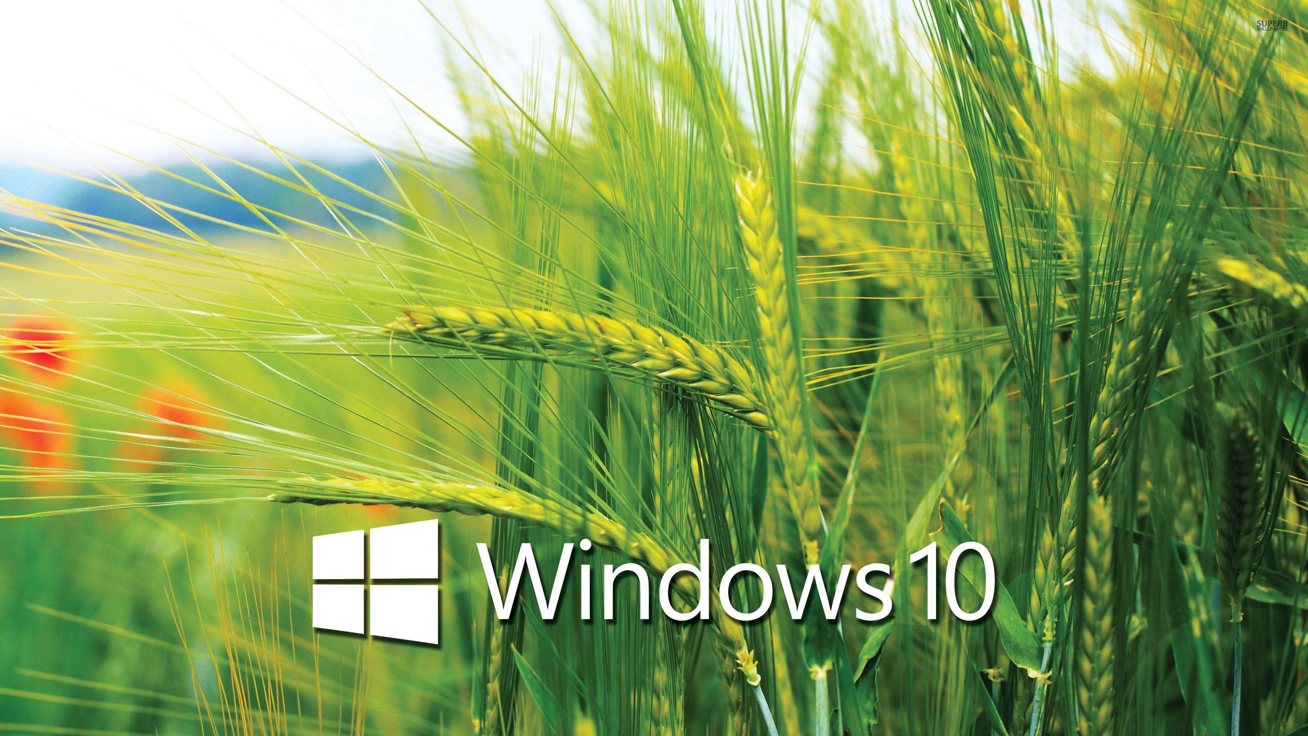 Windows 10 Transparent Wallpapers.