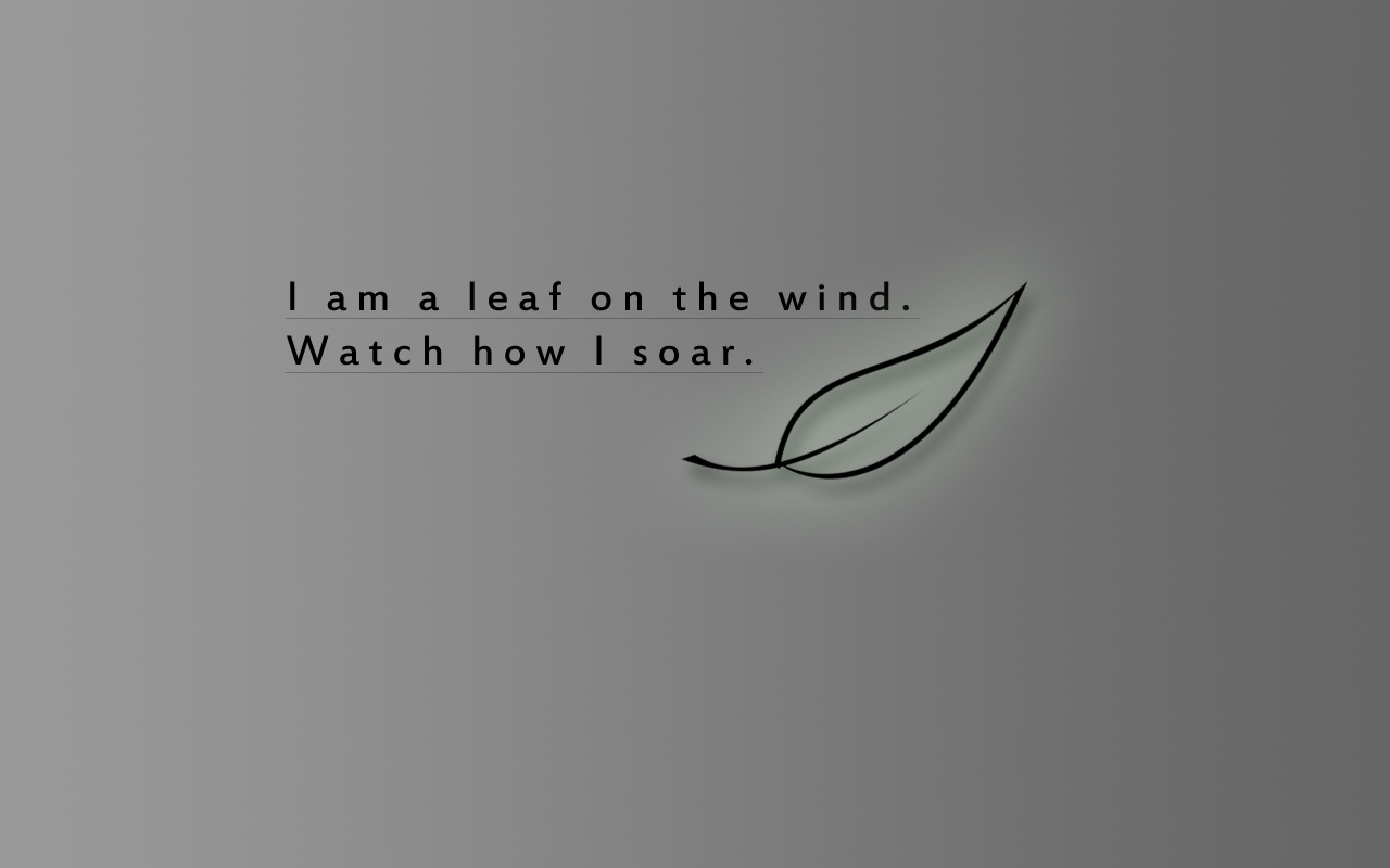 serenity leaf quotes wind firefly fly watches Wallpaper HD | come .
