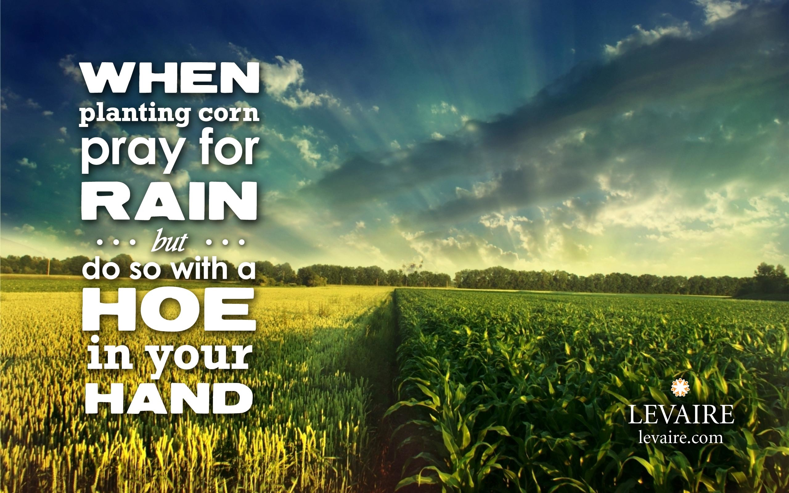 When planting corn, pray for rain but do so with a hoe in your hand