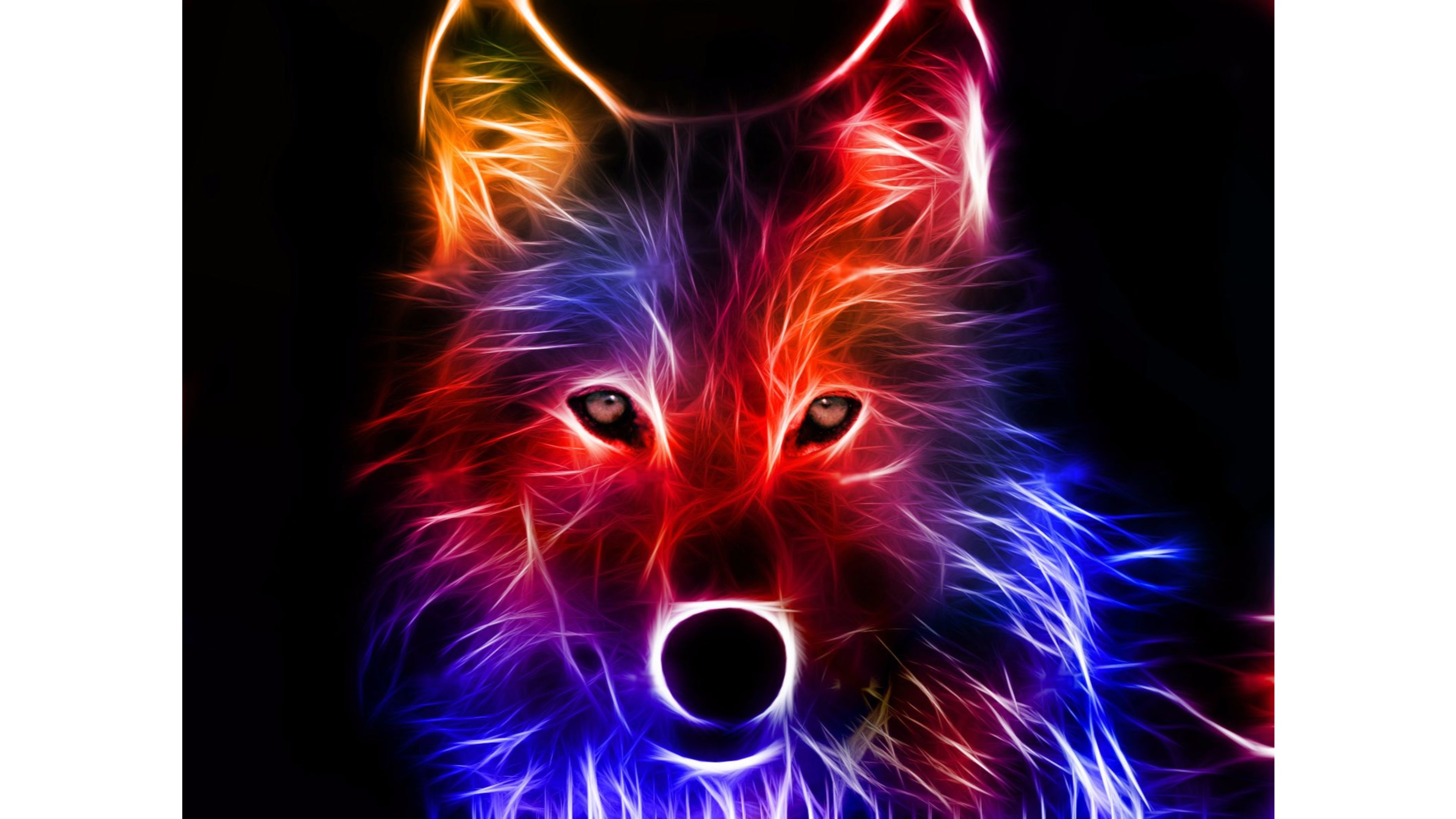 Colored Wolf 3D 4K Wallpaper | Free 4K Wallpaper
