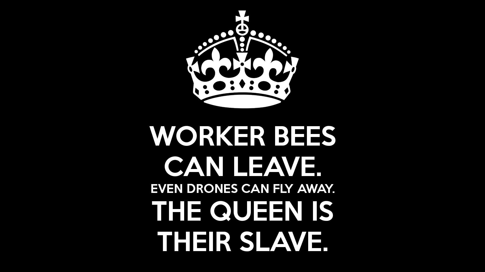 Work Like A Boss Wallpaper, Work Like A Boss Wallpapers – Faunus Bedinham