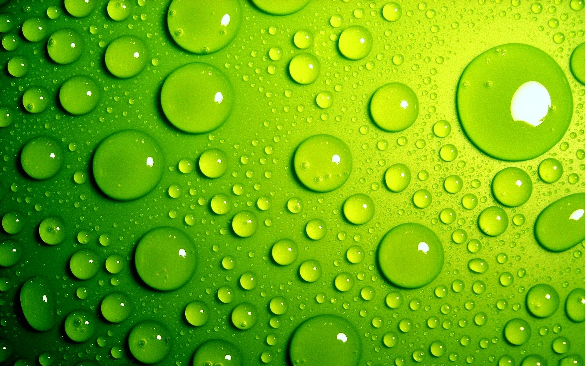 Green Background. 1680×1260. Green Bubbles