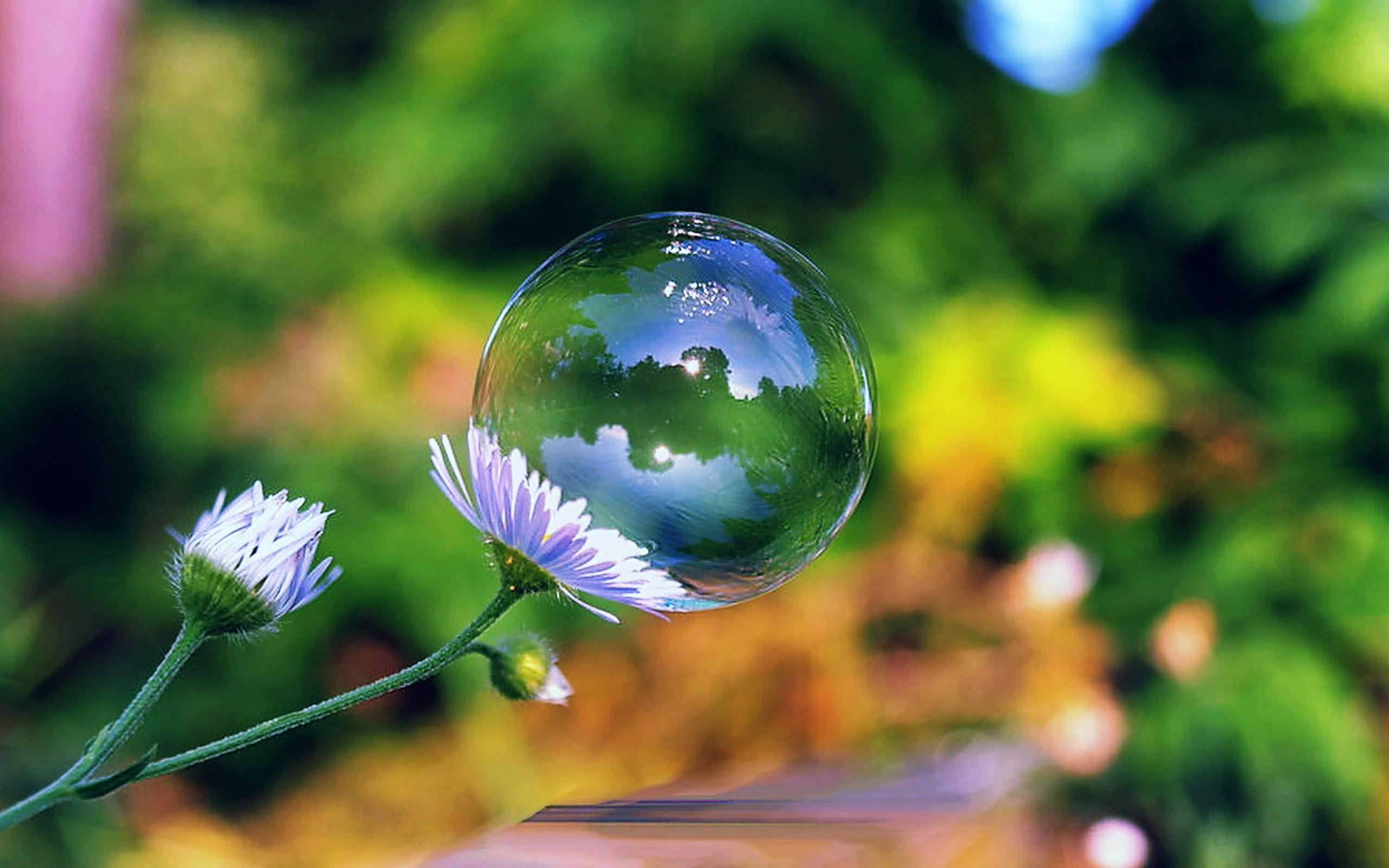 Bubble Desktop Backgrounds.