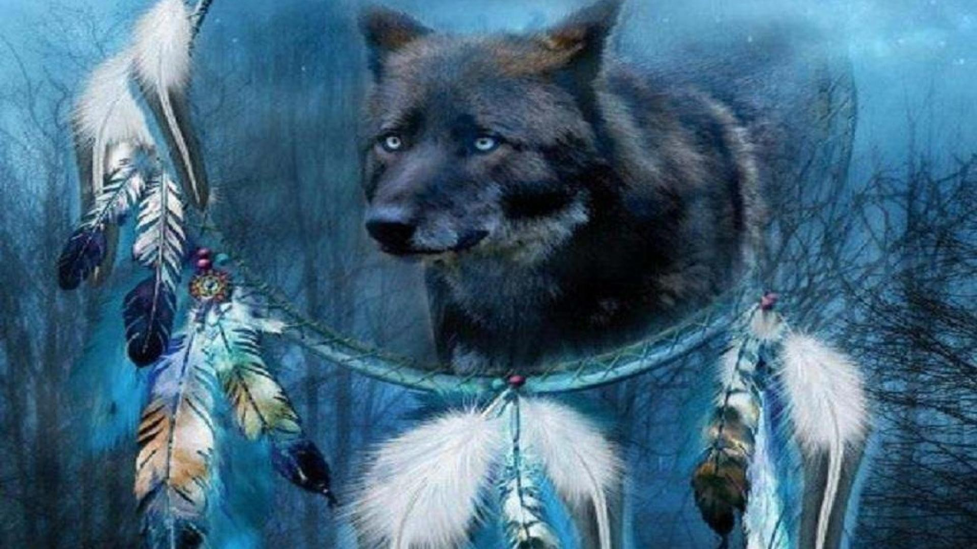 wolf dream catcher – Other & Animals Background Wallpapers on .