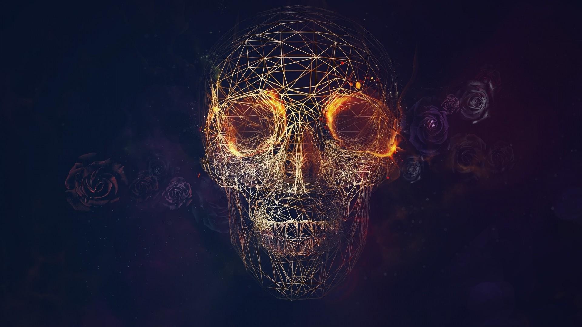 Preview wallpaper skull, lines, roses, geometry 1920×1080