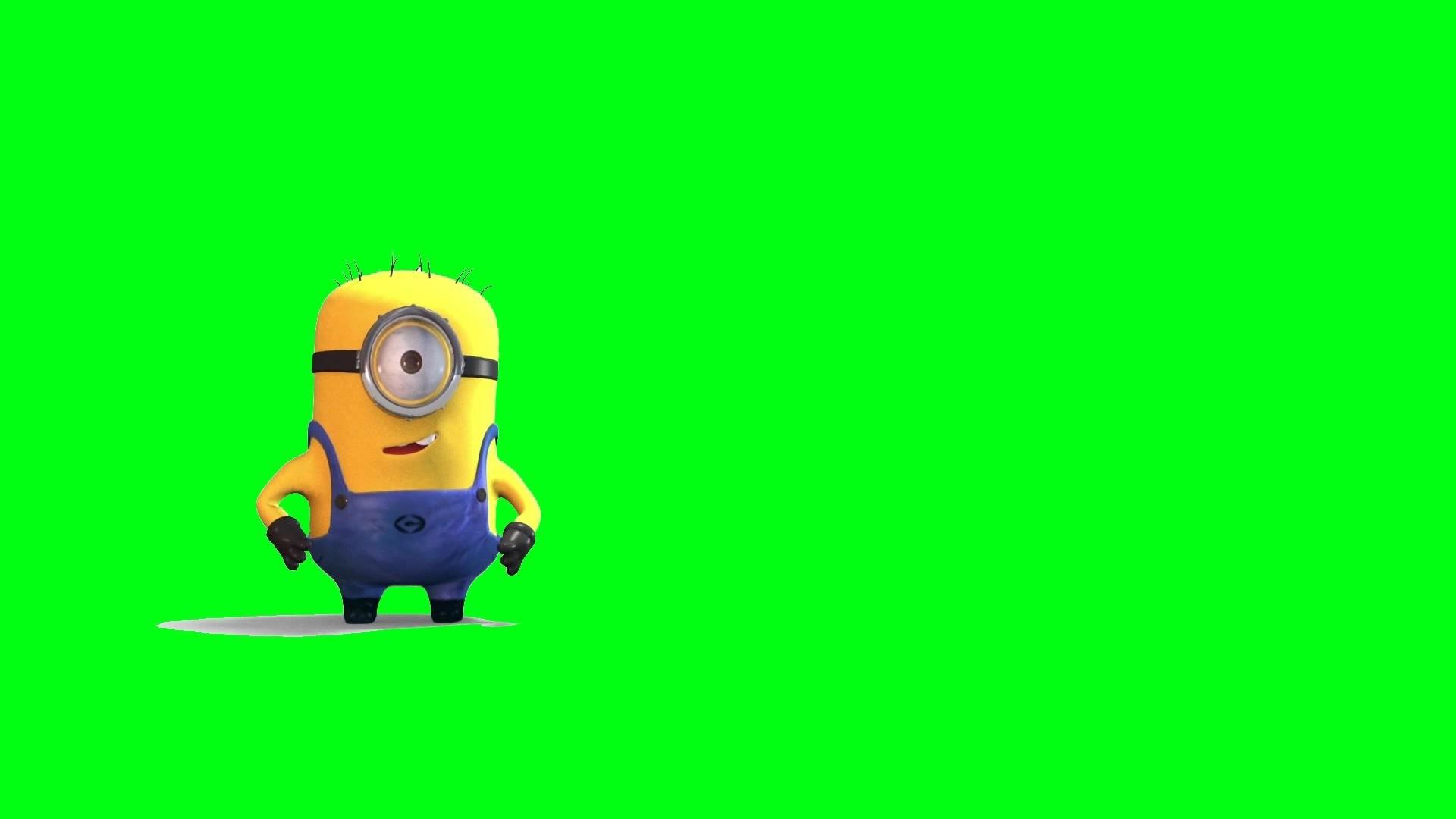 The Bottom Minion – Funny Scene (Green Screen Footage) – YouTube