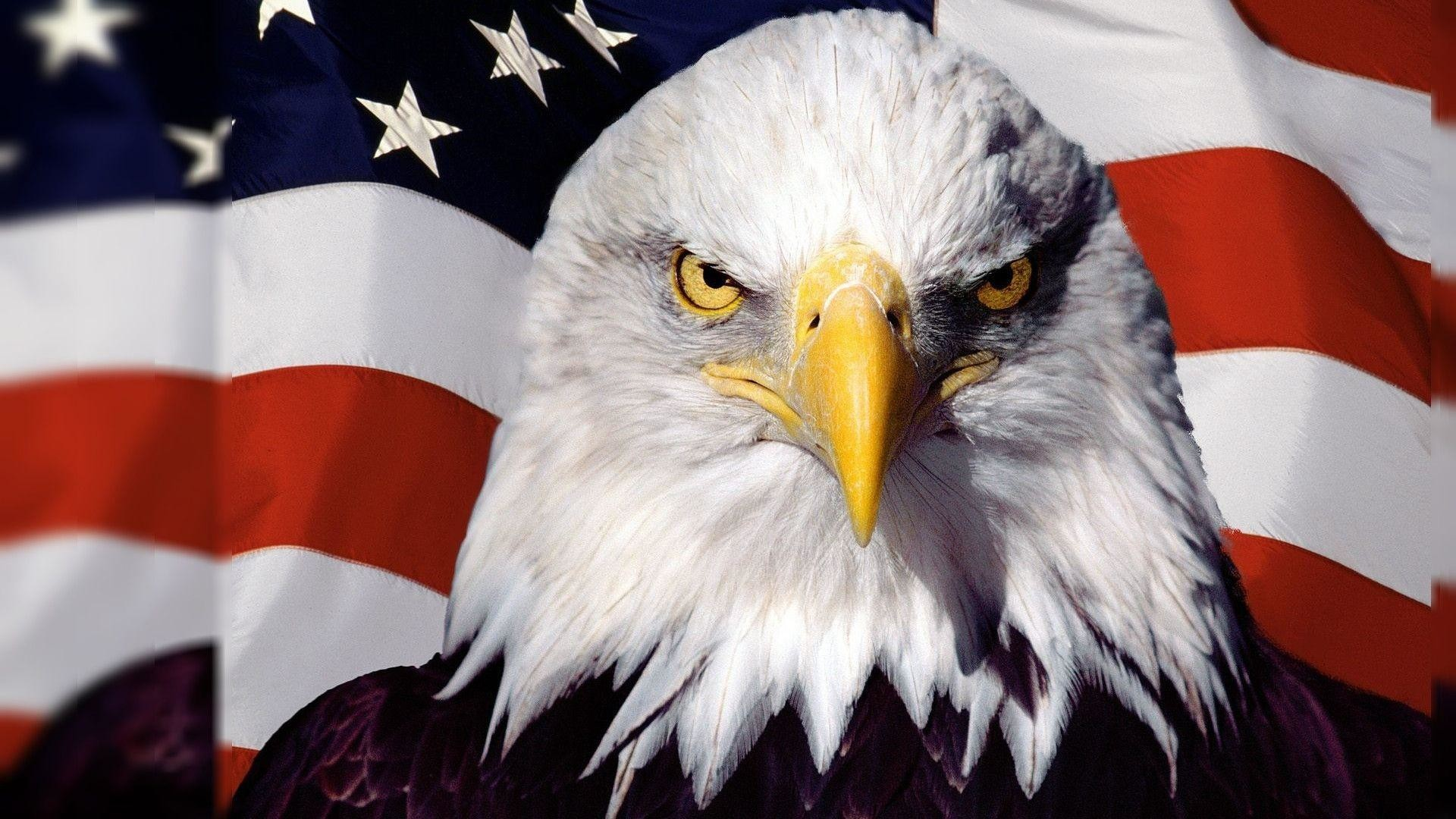 Wallpapers For > American Flag Wallpaper Widescreen