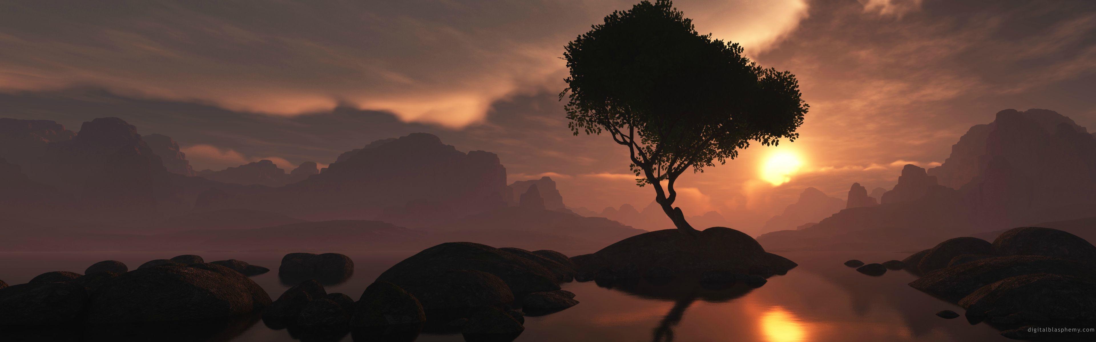 Digital Blasphemy Wallpaper: Lone Tree by Ryan Bliss