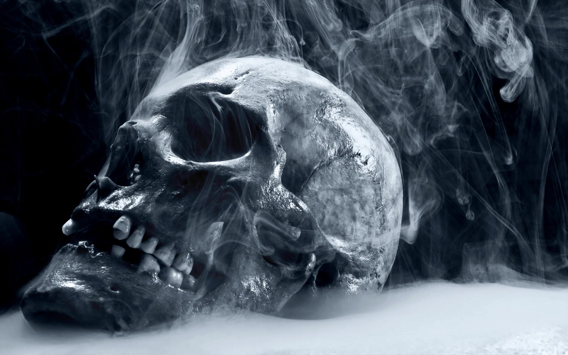 Skull Wallpaper Find best latest Skull Wallpaper in HD for your | HD  Wallpapers | Pinterest | Skull wallpaper, Hd skull wallpapers and Wallpaper