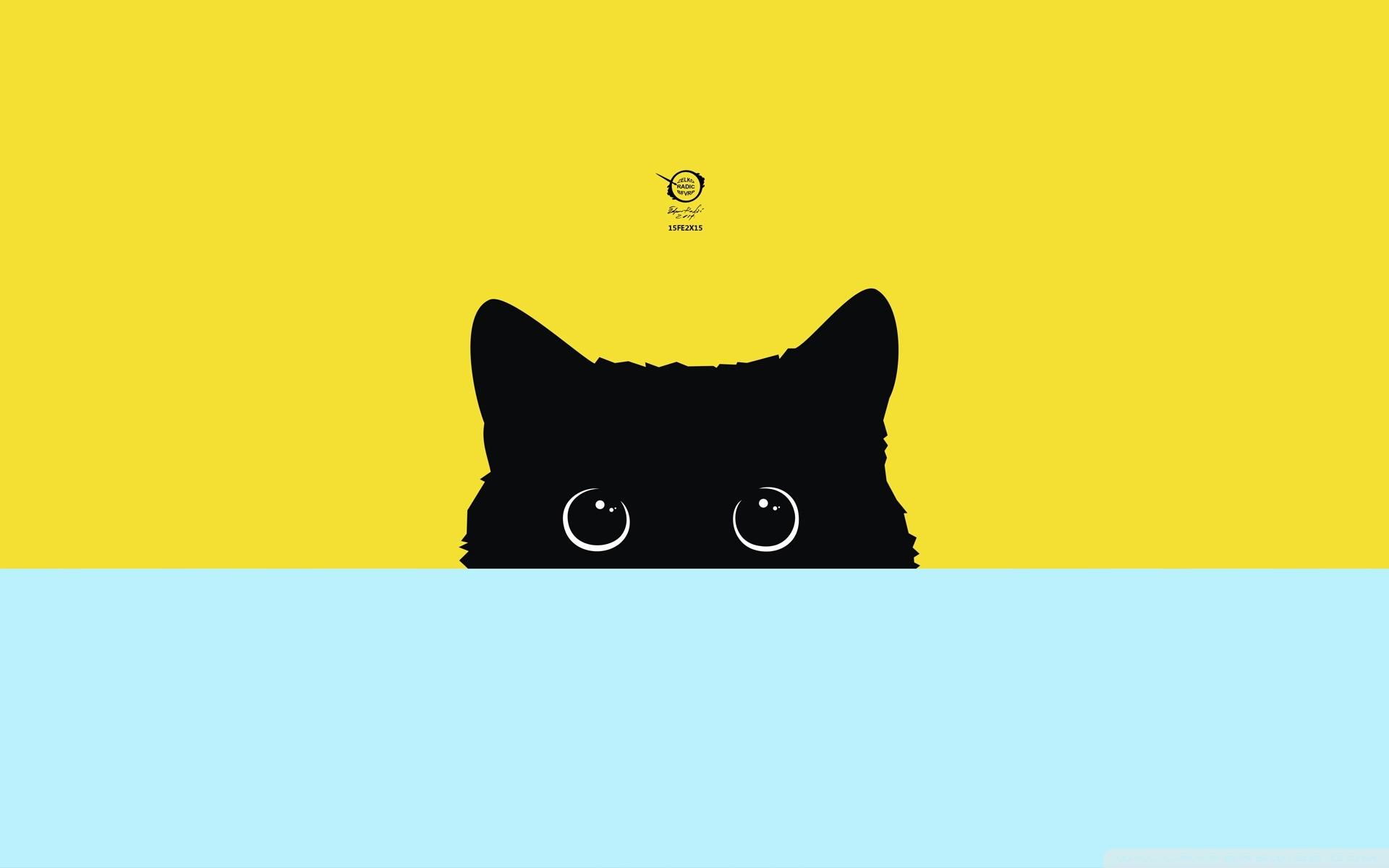 Kitty HD Wide Wallpaper for Widescreen