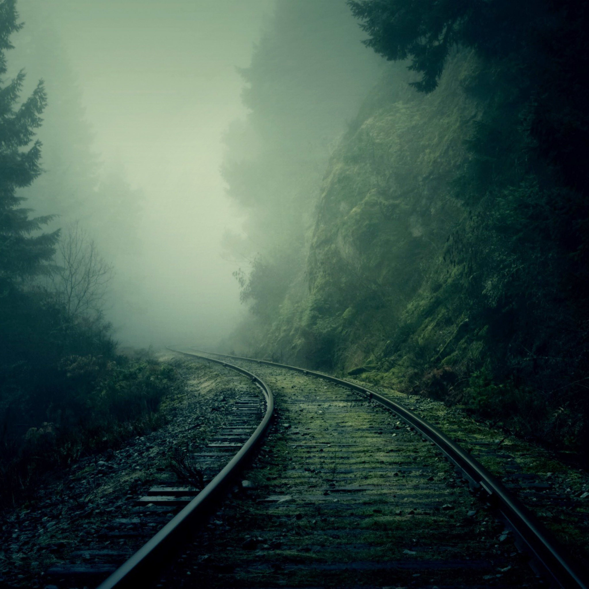 2653 3: Foggy Train Tracks Forest iPad wallpaper